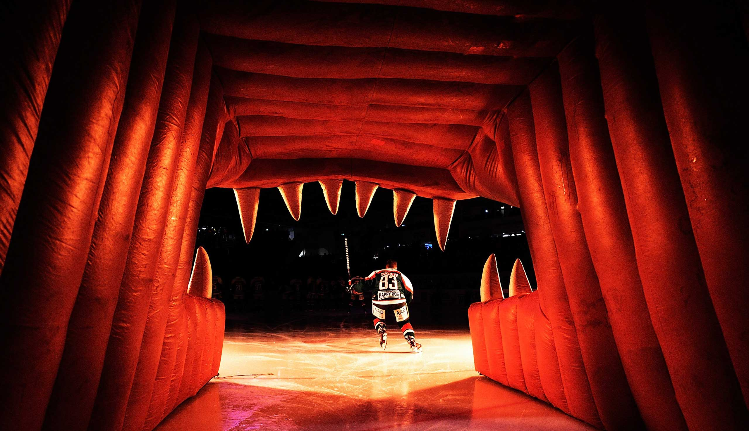 Nov. 2, 2014. Adrian Grygiel of Augsburger Panther skates onto the ice before the DEL Ice Hockey match between Augsburger Panther and Schwenninger Wild Wings at Curt Frenzel Stadium in Augsburg, Germany.