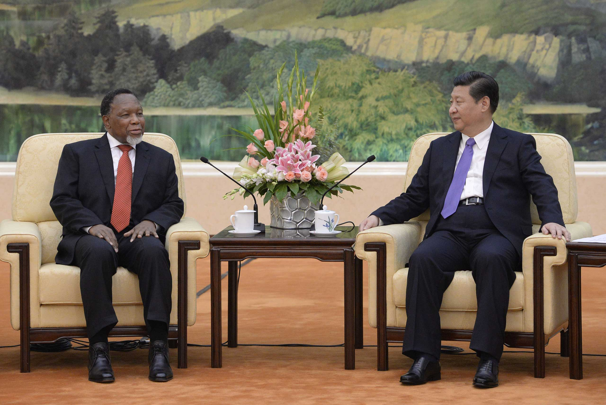 Then-South African Deputy President Kgalema Motlanthe meeting with Chinese President Xi Jinping in Beijing last year.