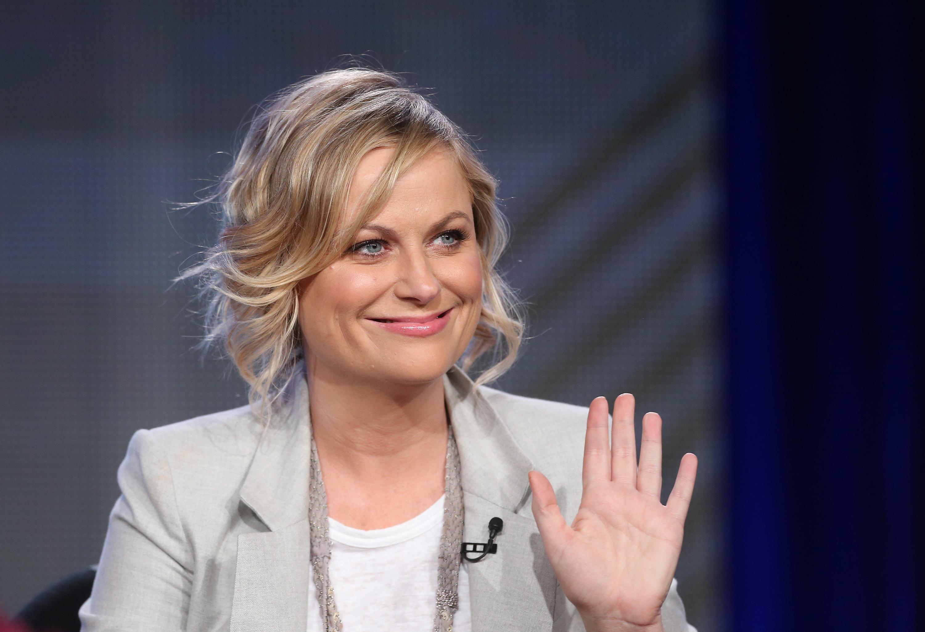 Actress/Executive Producer Amy Poehler speaks onstage during the 'Comedy Central - Broad City' panel discussion at the Viacom portion of the 2014  Winter Television Critics Association tour at the Langham Hotel on January 10, 2014 in Pasadena, Calif.