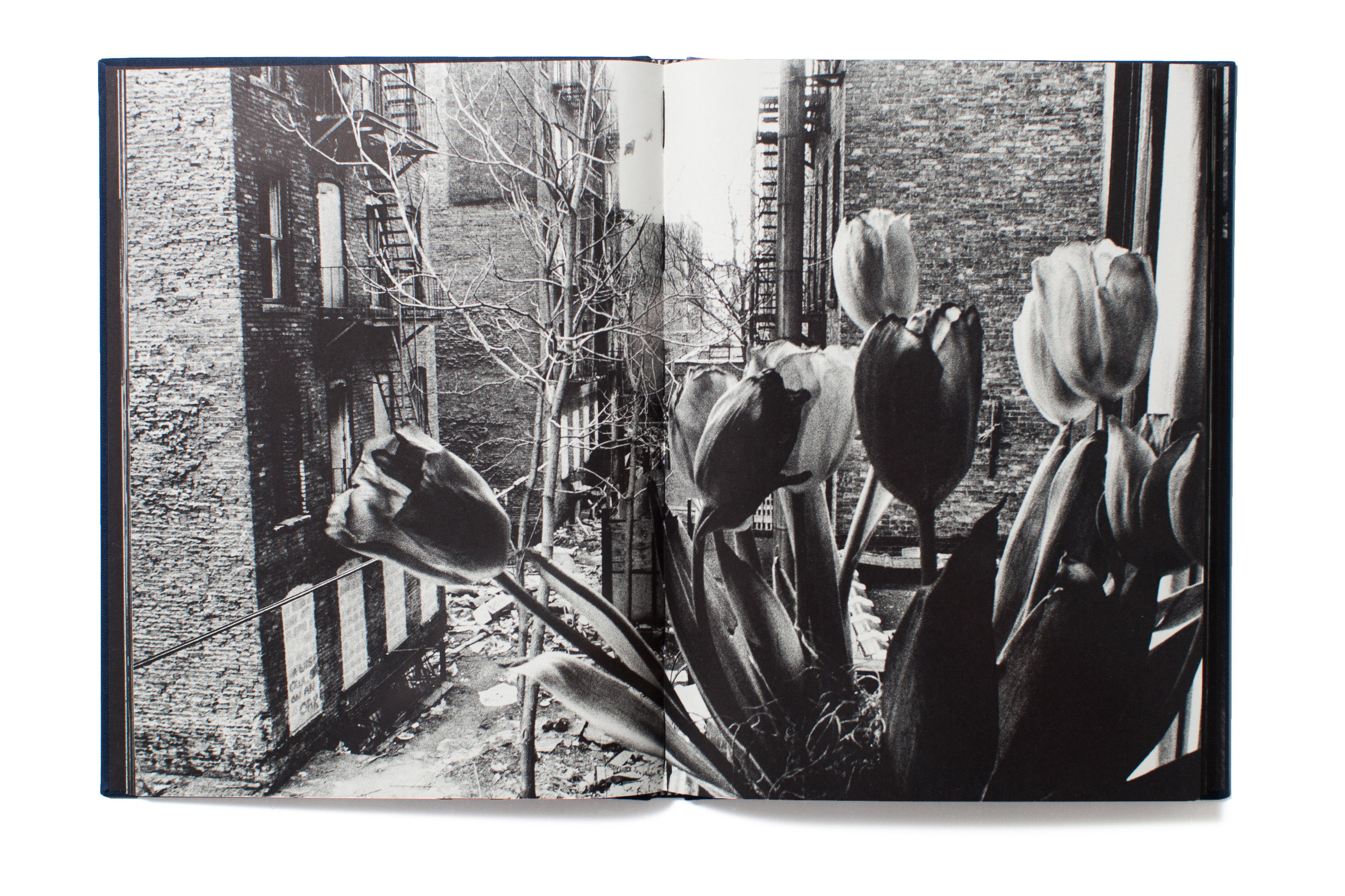 The reissue of Invisible City is rich in texture and is every bit as intoxicating as that first visit to Schles' East Village in New York City in the eighties.  -Michelle Molloy, International Photo Editor, TIME.