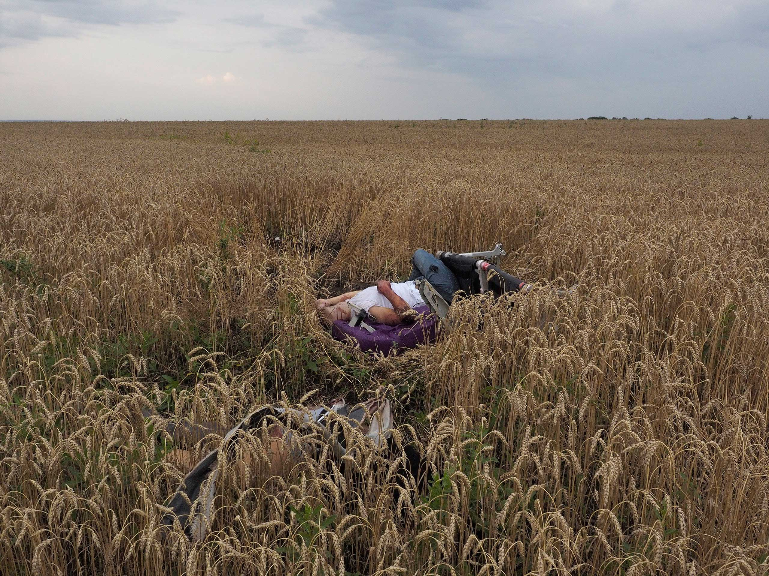 """Jerome Sessini. Torez, Ukraine. July 17, 2014: """"We were in Donetsk when we got word that a military plane had come down,"""" says Magnum photographer Jerome Sessini. """"As we made our way there, we heard it was, in fact, a passenger plane. When we arrived, I could see the burning wreckage along the small roads. And the scene [revealed] itself to me: There were bodies strewn everywhere, and bits of plane scattered – it was a horrific scene.                                                               """"There were separatists guarding the place. I saw one woman in part of the wreckage and she looked like she was just asleep. Her body was intact. At one point, near some fields, I noticed this purple color on the edge of my sight and we walked in and found this body. He was still strapped into his seat and the scene looked totally unreal. It was pretty scary, actually. I only took a few frames. I didn't want to go any closer. What you see here is as close as I got.                                                               """"One security guard asked me to hand over my memory card. I had to – and I think this photo was on it. But when he was leaving, I stood in the middle of the road and blocked the car as they left. He gave the card back to me, and even apologized for taking it.                                                               I was there with two other photographers and on the way back in the car we didn't talk. It was such a hard scene to process. It was hard to take it in. Nothing can prepare you for a scene like that. It is one of the most violent I have seen."""""""