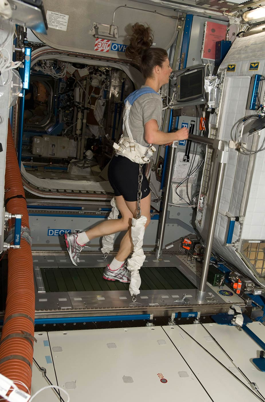 Astronaut Tracy Caldwell Dyson, equipped with a bungee harness, exercises on the Combined Operational Load Bearing External Resistance Treadmill
