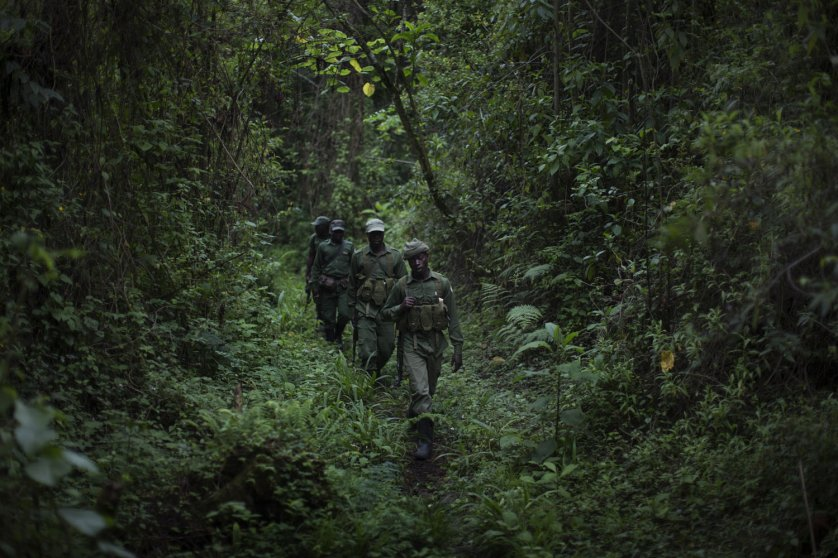 Park rangers hike down from their outpost on the Nyiragongo volcano in the Virunga National Park, where environmentalists are opposing oil drilling, in the Democratic Republic of Congo.
