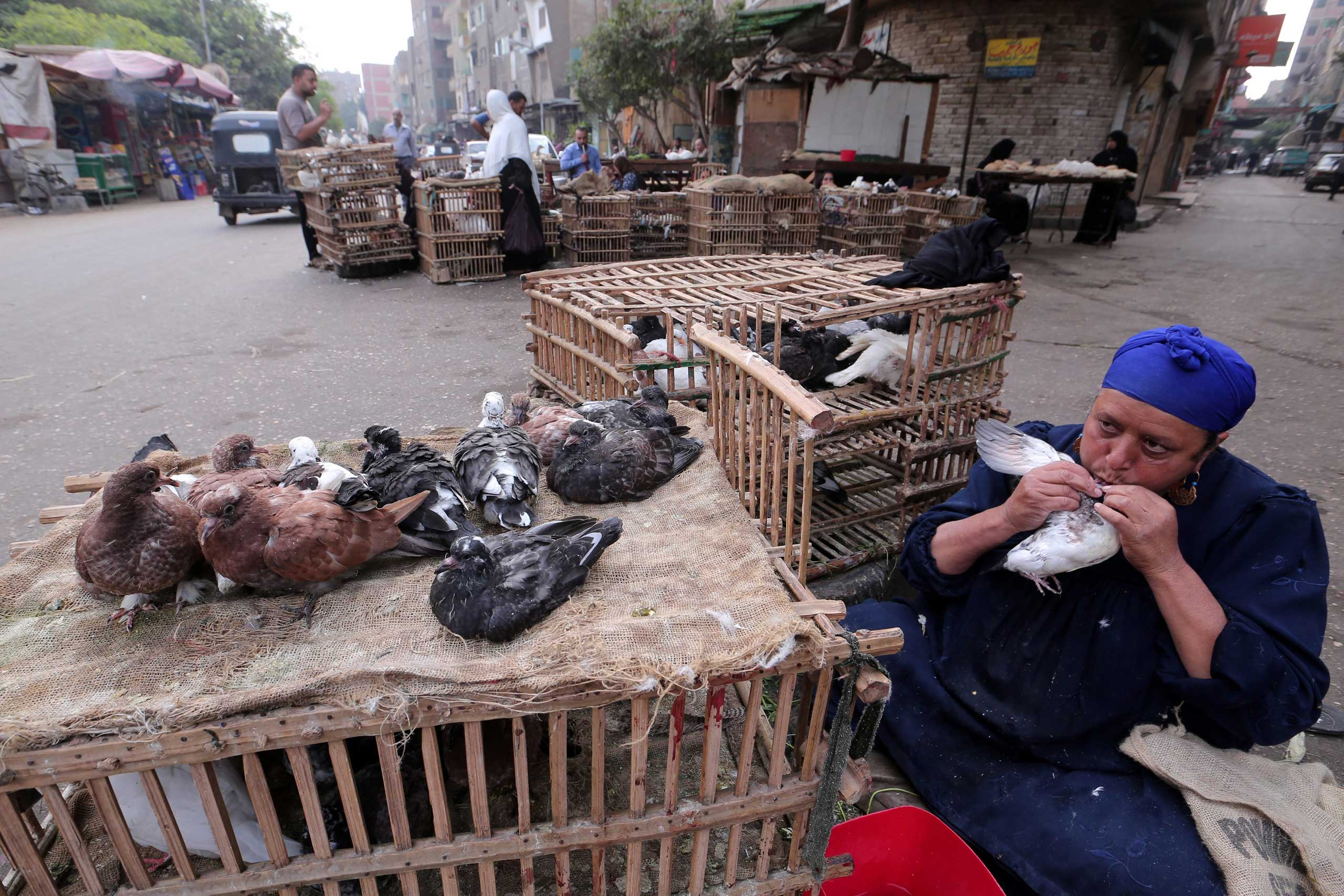 A poultry merchant feeds a pigeon from her mouth in a popular market in Cairo, Egypt, Nov. 19 2014.