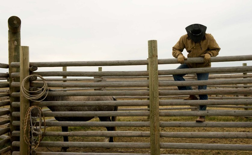 Jesse Bear climbs over a corral fence to train a horse on the ranch owned by his father, a Three Affiliated Tribes member, just off the Fort Berthold Reservation in North Dakota
