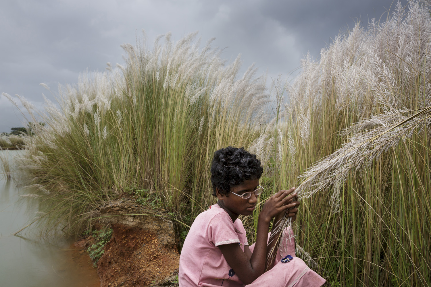 Sonia Singh explores some of her first sensations as she runs her hands through bullrushes close to her village after undergoing eye surgery on Oct. 28, 2013 in West Bengal, India.