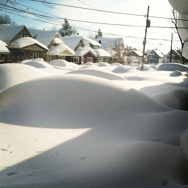 Wil Fuentes posted this photo of a neighborhood completely covered in snow.