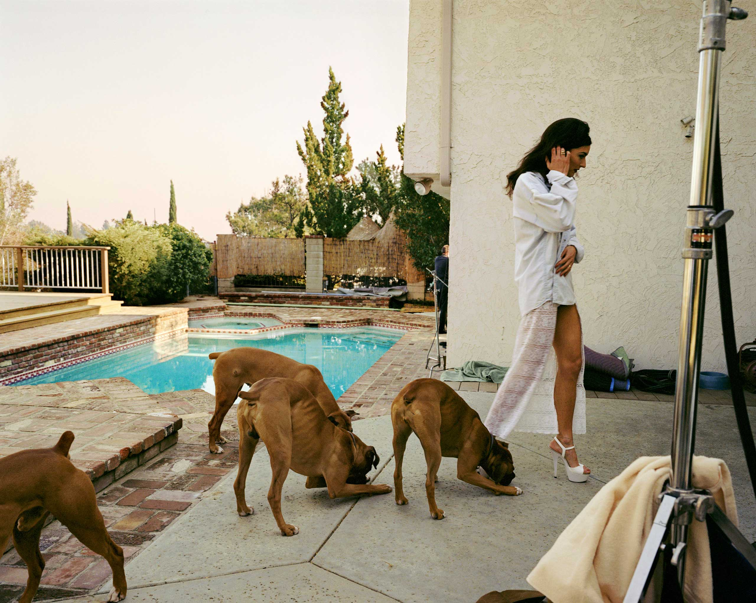 Boxers, Mission Hills, 1999, from the series The Valley
