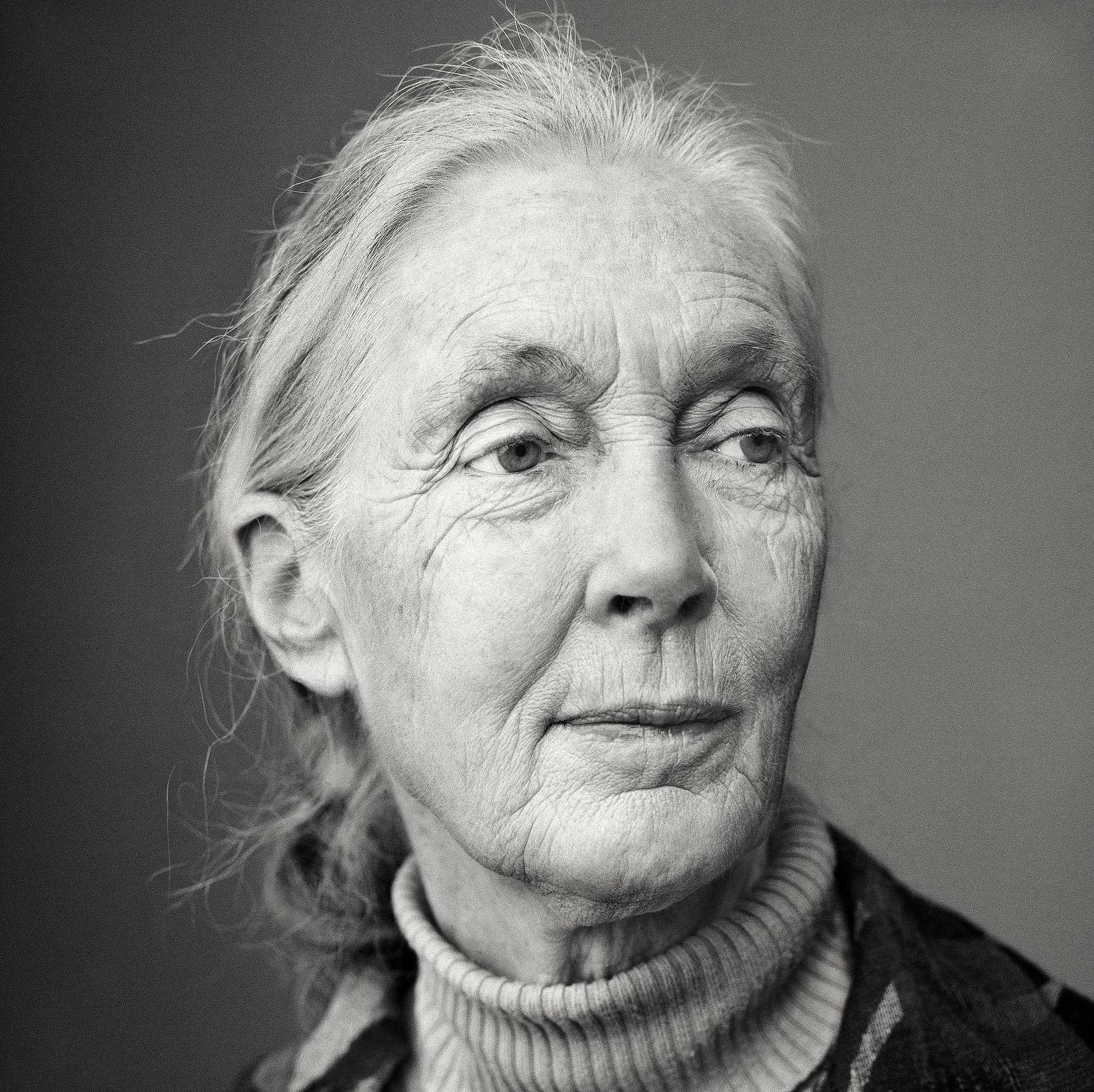 Dr. Jane Goodall.                                                               This was for National Geographic. So many people in Hollywood make a lot of effort to not age and Jane Goodall just looks so beautiful in this picture. She has this great air about her. So many other people try so hard to look pretty and she does it so effortlessly. We photographed her in a hotel owned by friends of hers. We had this tiny room to set up. We were told that she didn't want a stylist or any hair and makeup. She came by for half an hour sat down and I took her picture.