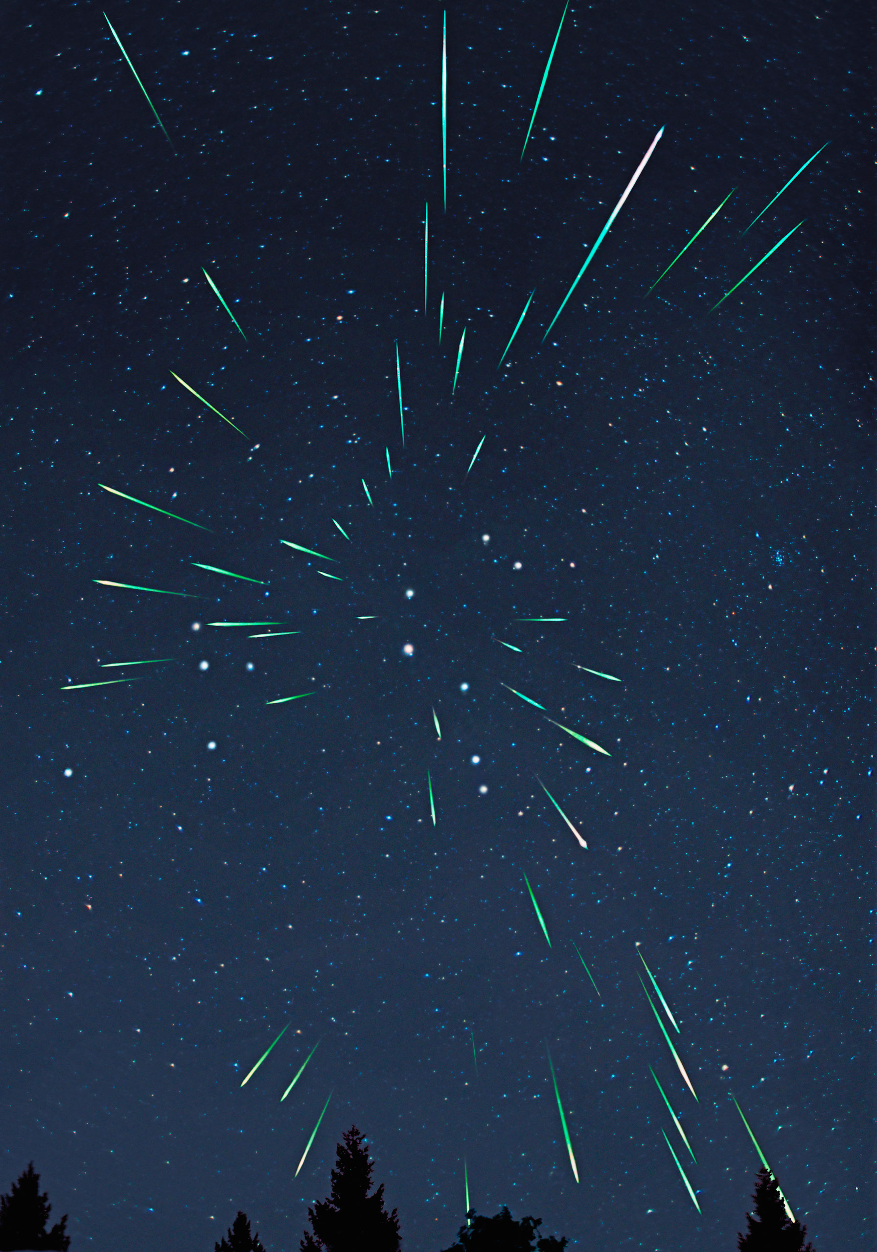A multiple exposure of a Leonid meteor shower.