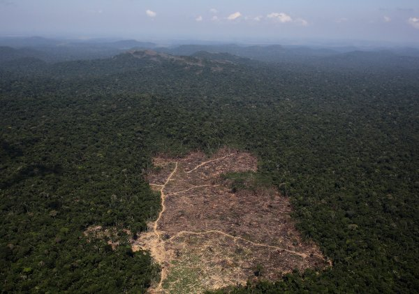 Deforestation In The Brazilian Amazon Is Easing Up Time