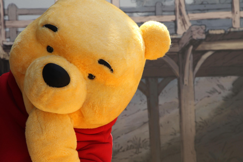 Winnie The Pooh arrives at The Los Angeles Premiere of  Winnie The Pooh  held at The Walt Disney Studios on July 10, 2011 in Burbank, California.