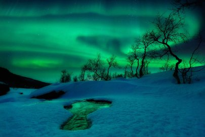 The aurora borealis traces the shifting patterns of the Earth's magnetic field, creating a spectacular midwinter show in Nordland Fylke, Norway. The green light in this image comes from oxygen atoms high in the atmosphere, which have been energized by subatomic particles from the solar wind.