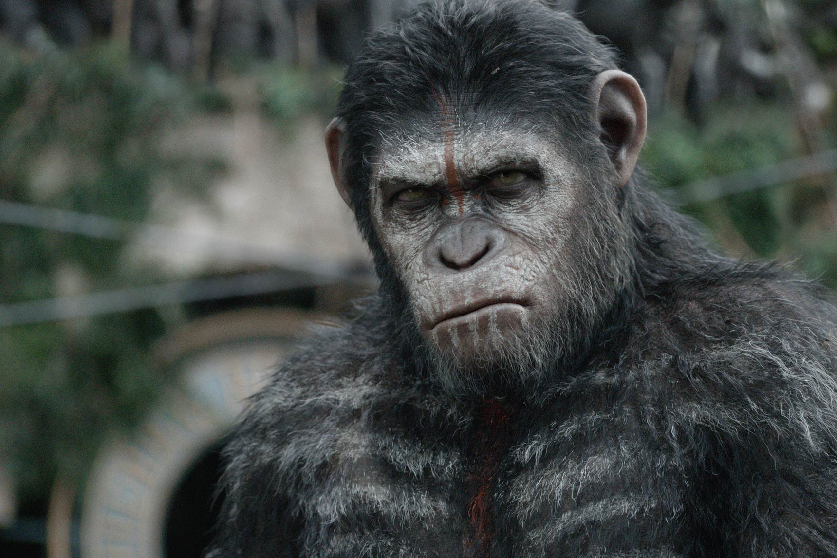 8. Dawn of the Planet of the Apes - $208,545,589