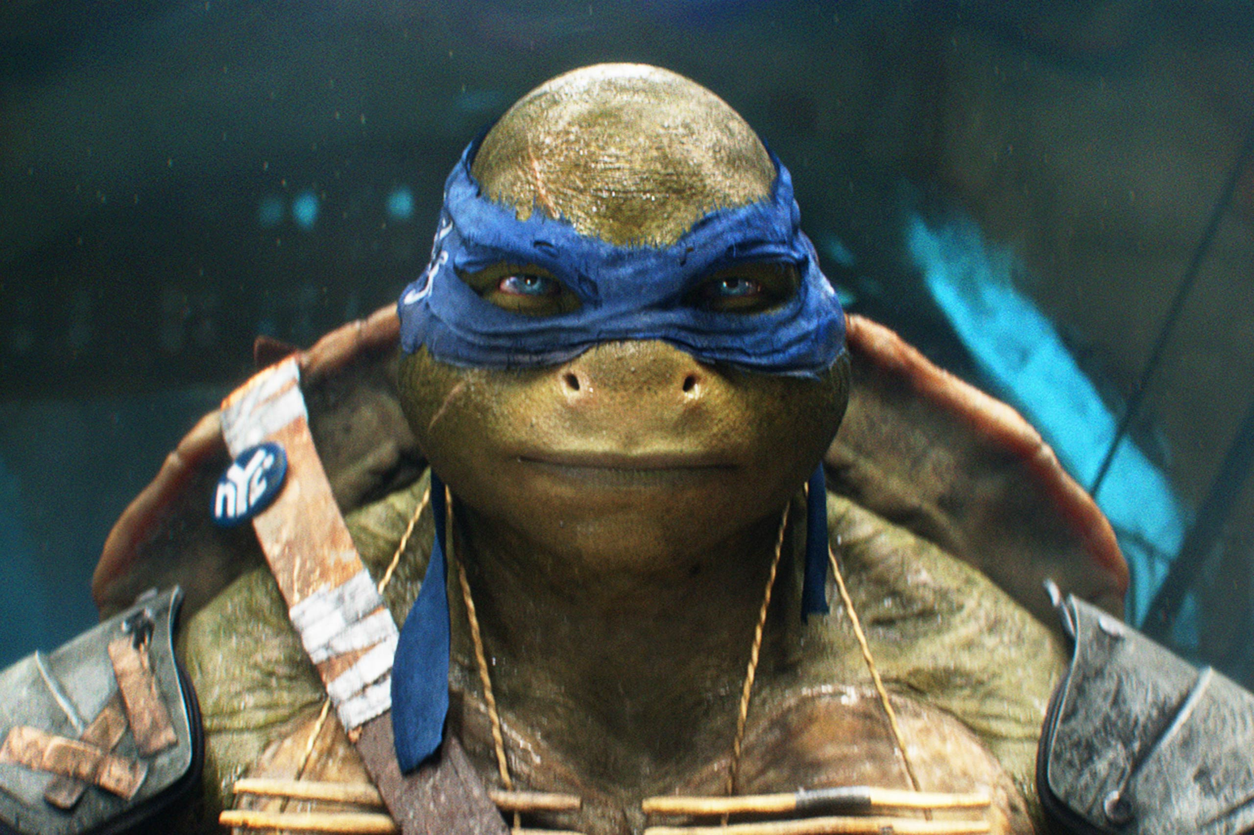 13. Teenage Mutant Ninja Turtles - $191,204,754
