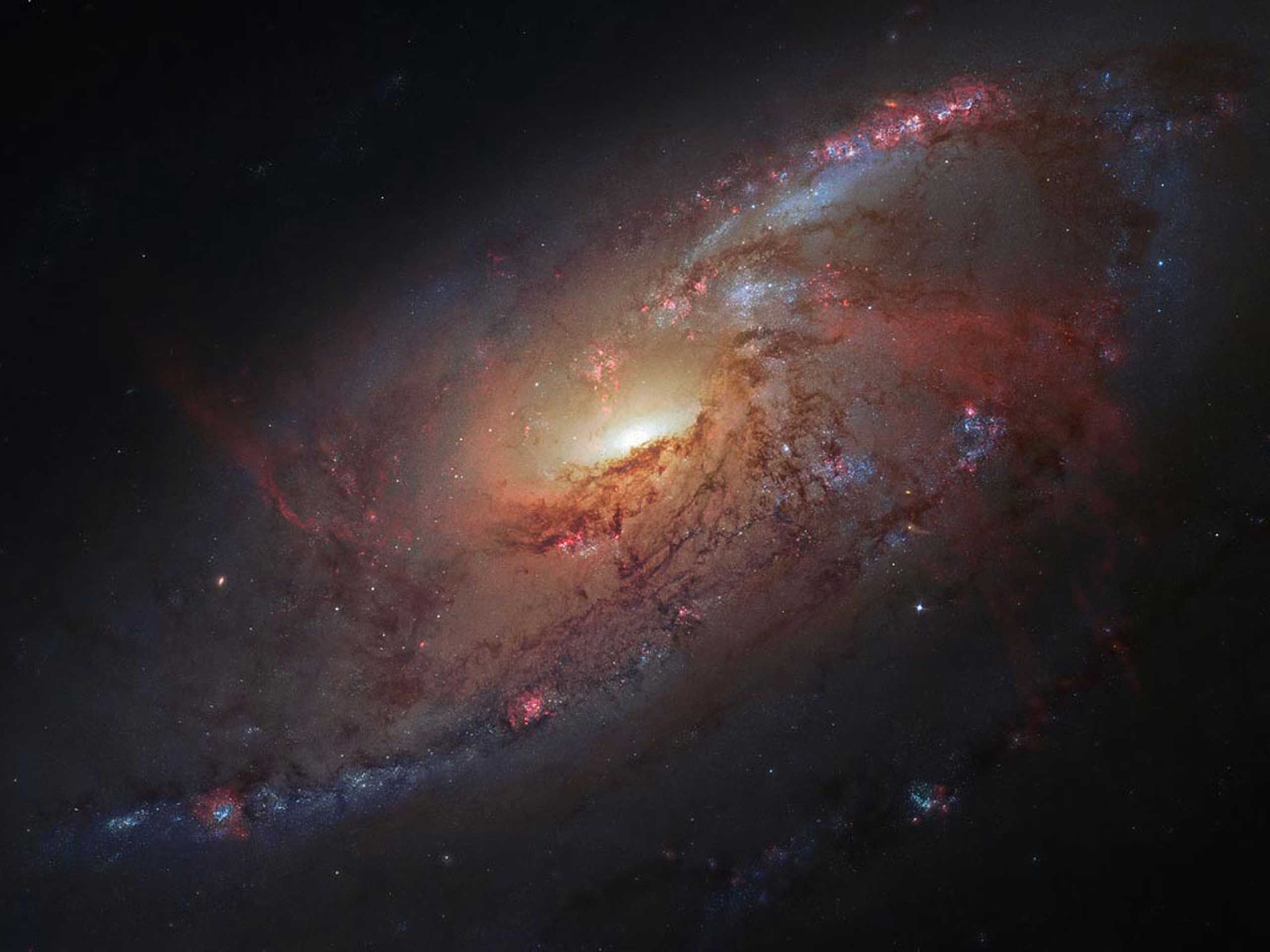 This image combines Hubble Space telescope observations of the M 106 galaxy with additional information captured by amateur astronomers Robert Gendler and Jay GaBany.