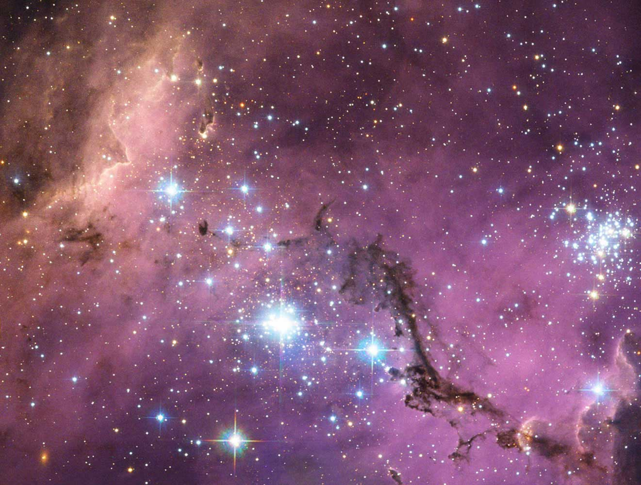 Nearly 200, 000 light-years from Earth, lies the Large Magellanic Cloud, a satellite galaxy of the Milky Way. As the Milky Way's gravity gently tugs on its neighbor's clumps of diffuse dust and gas, they collapse to form new stars. In turn, these light up the ambient gas in a kaleidoscope of colors.