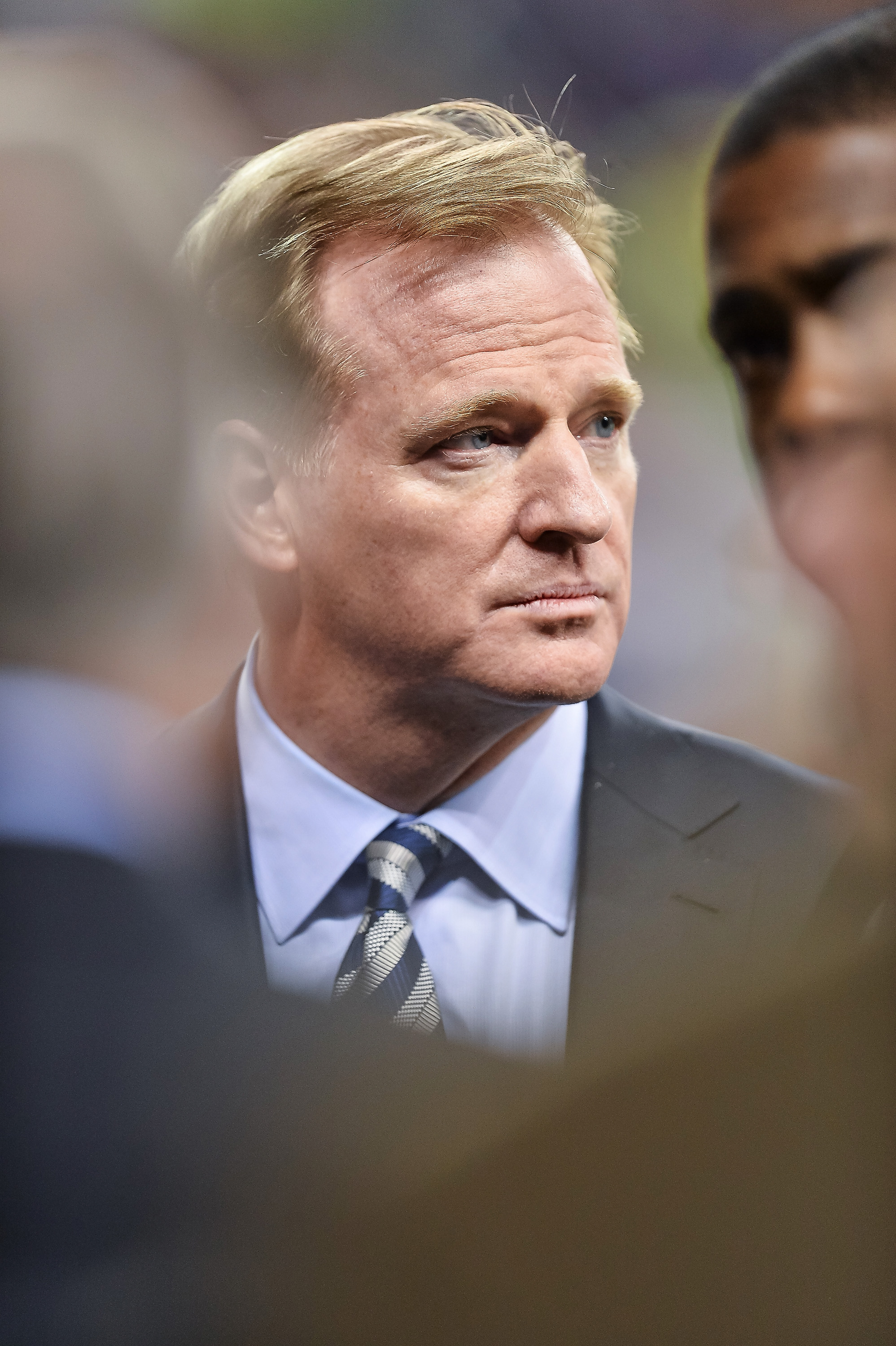 NFL Commissioner Roger Goodell meets fans on the field before a game between the New York Jets and Buffalo Bills at Ford Field on November 24, 2014 in Detroit, Michigan.