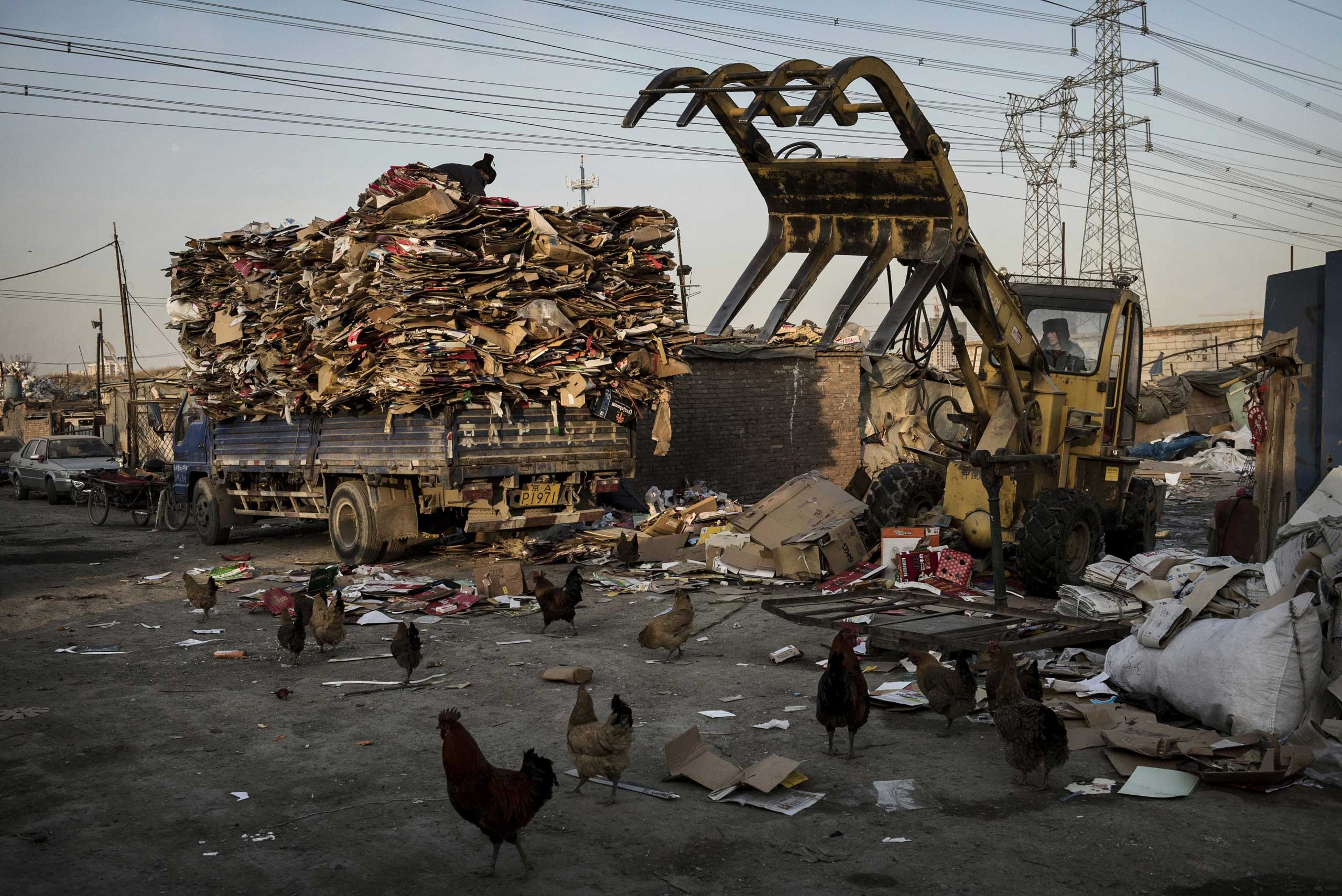 Laborers load cardboard onto a truck to be recycled in the Dong Xiao Kou village on December 11, 2014 in Beijing.