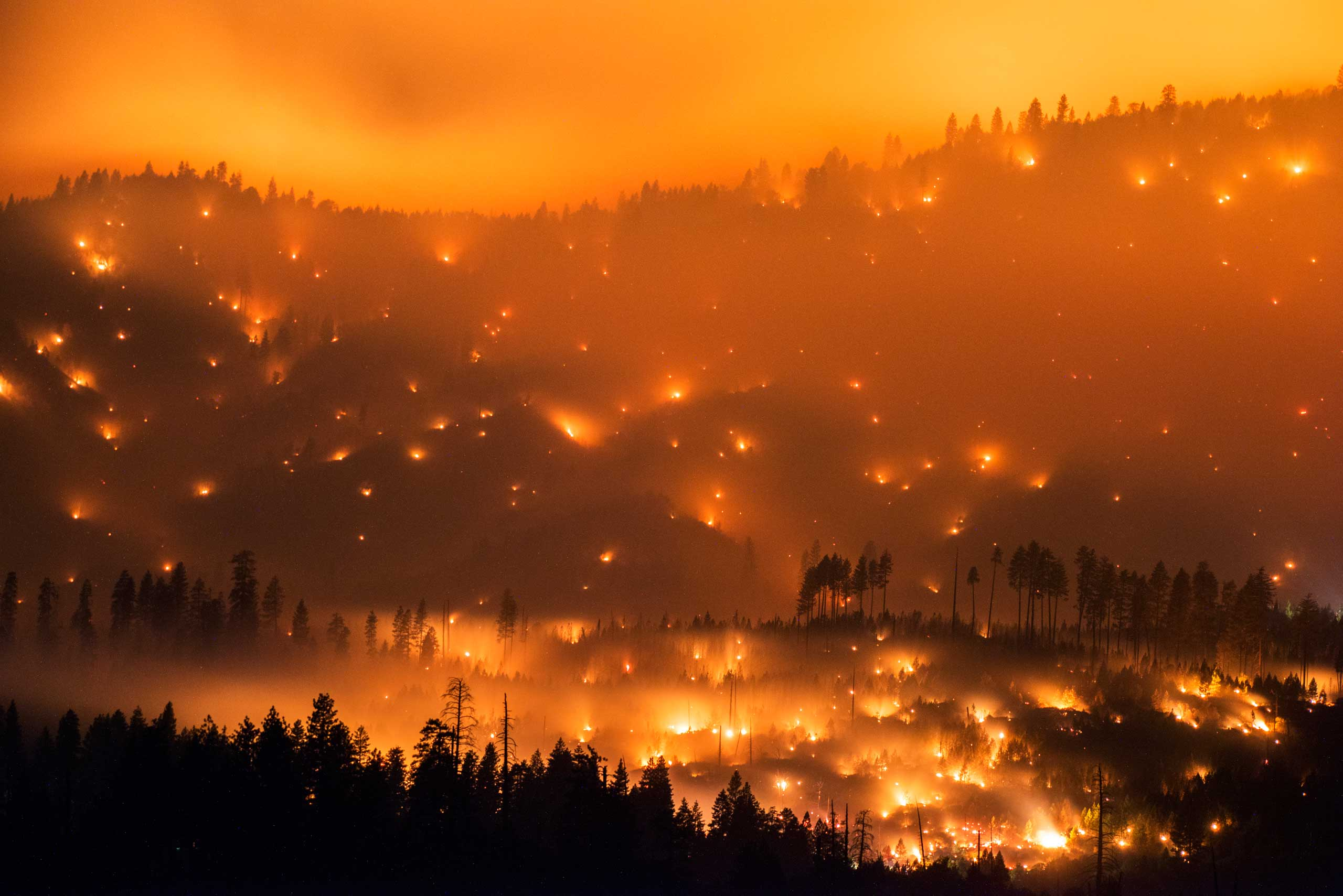 The El Portal Fire burns on a hillside in the Stanislaus National Forest and Yosemite National Park, July 27, 2014.