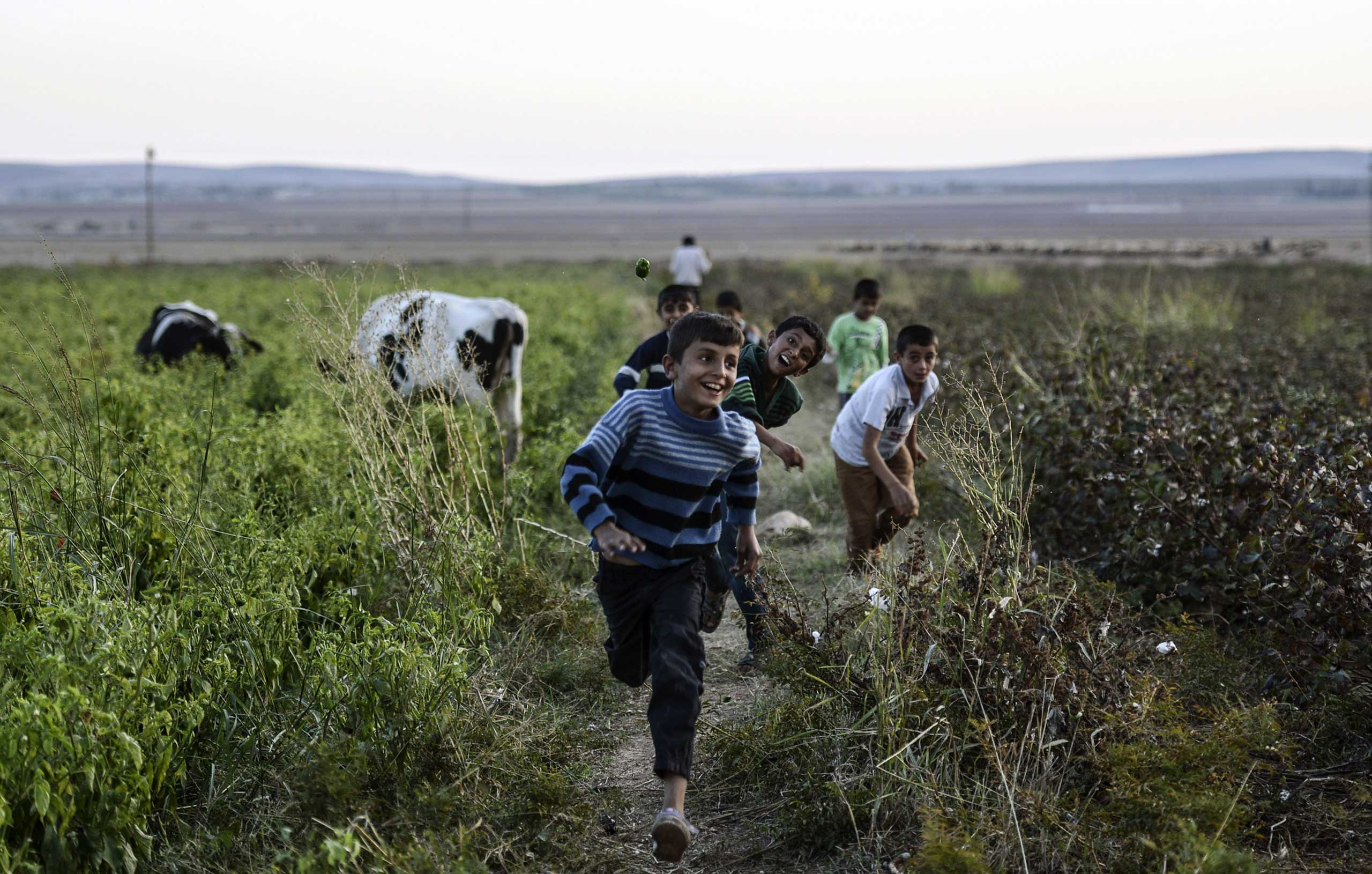 Kurdish boys play in a field on Oct. 25, 2014, near the Syria border in the southeastern village of Yumurtalik, Sanliurfa province, Turkey.