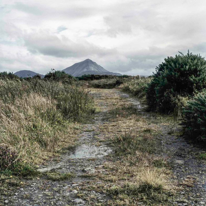 TIME LightBox: In Plain Sight As a young boy, Martin Gallagher was abused on this boreen in Gortahork, Ireland, by Father Eugene Greene. Greene would offer victims drink and cigarettes and let them drive his car.