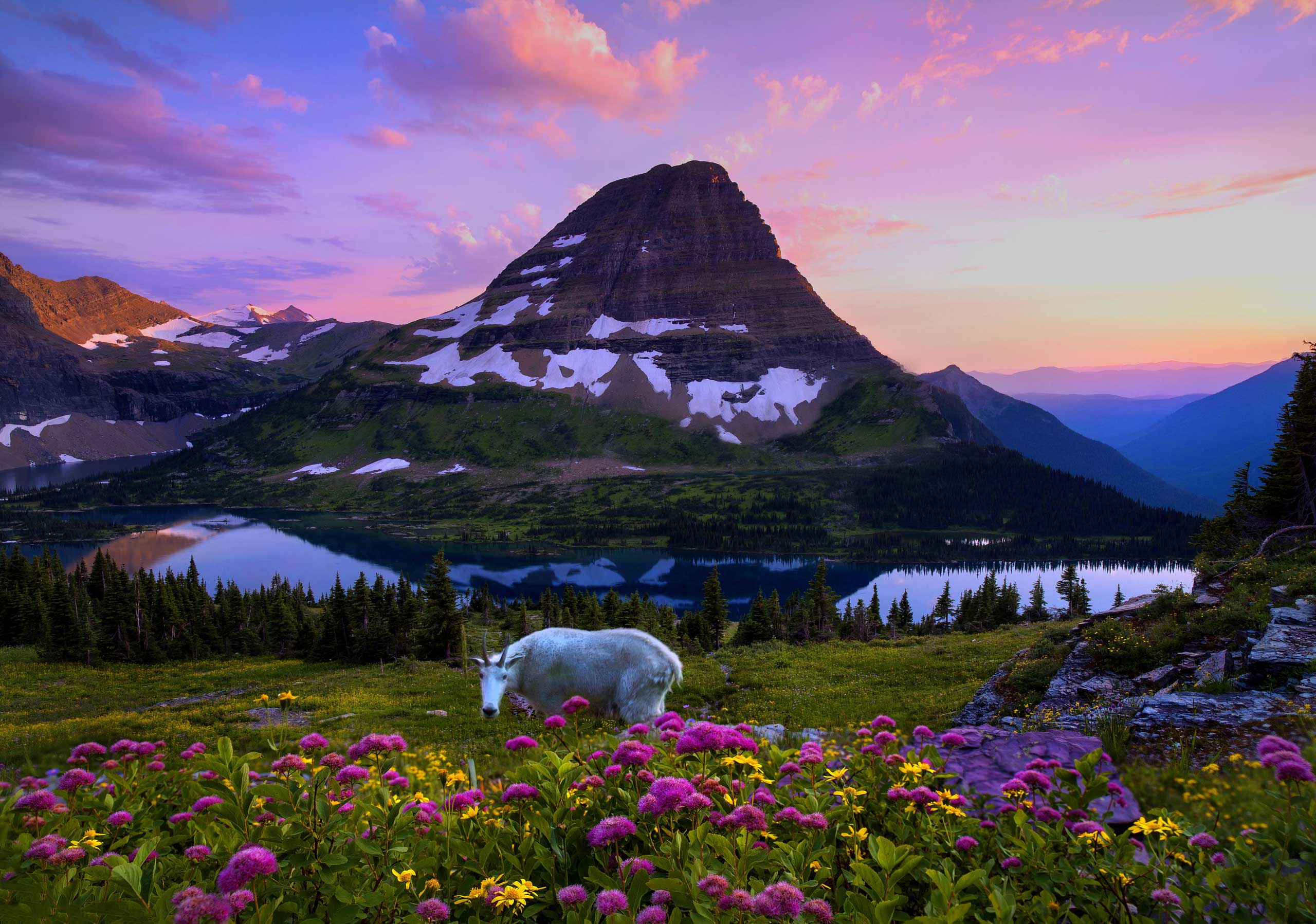 If it isn't God's backyard, then he certainly lives nearby.  - Robin Williams on Glacier National Park.
