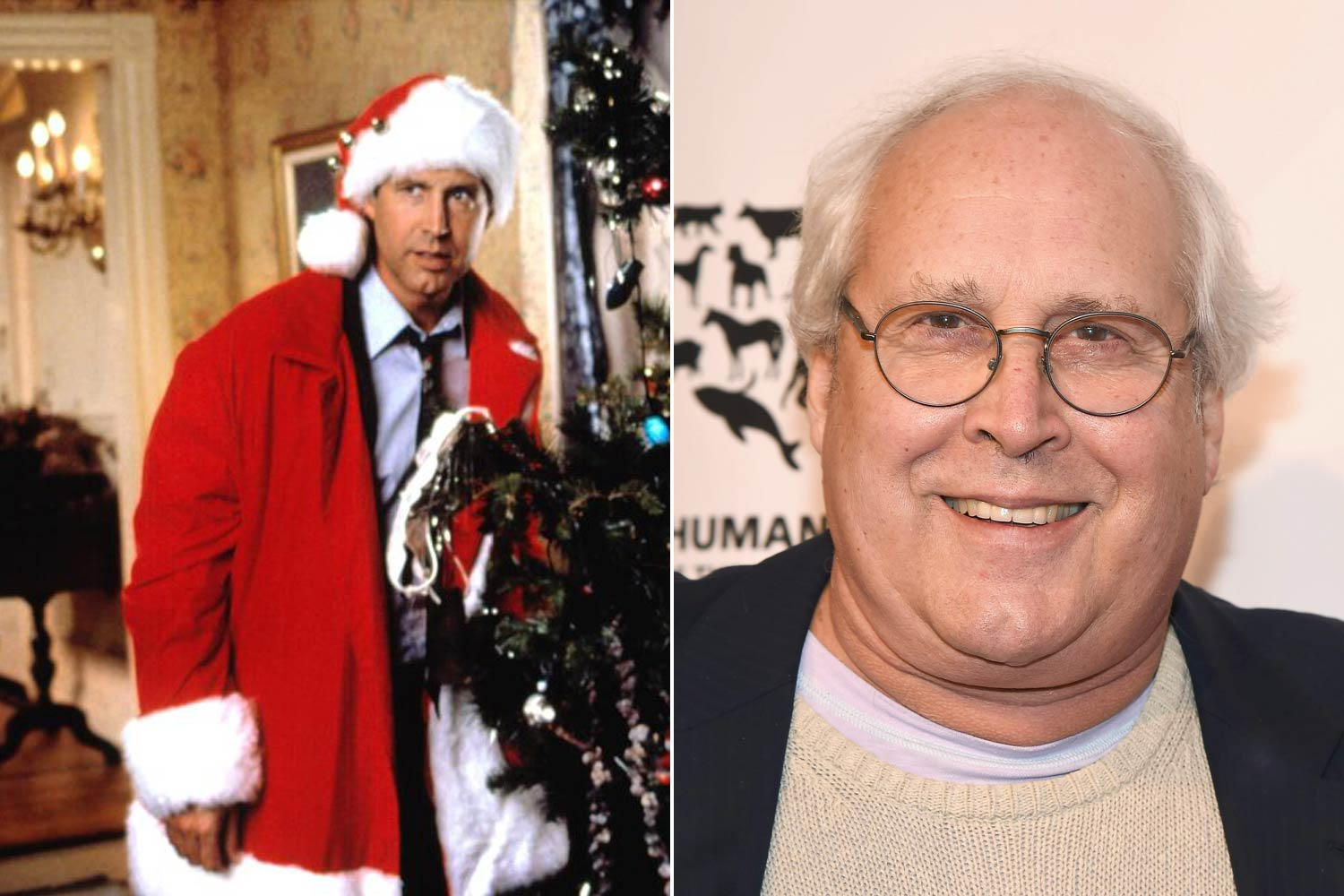 Chevy Chase - National Lampoon's Christmas Vacation, 1989