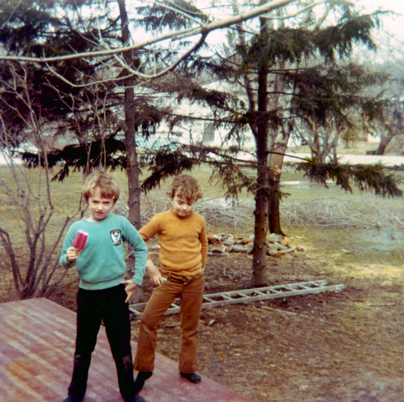 At age 8, Mark, left, and Scott at home in West Orange, N.J in April 1972.