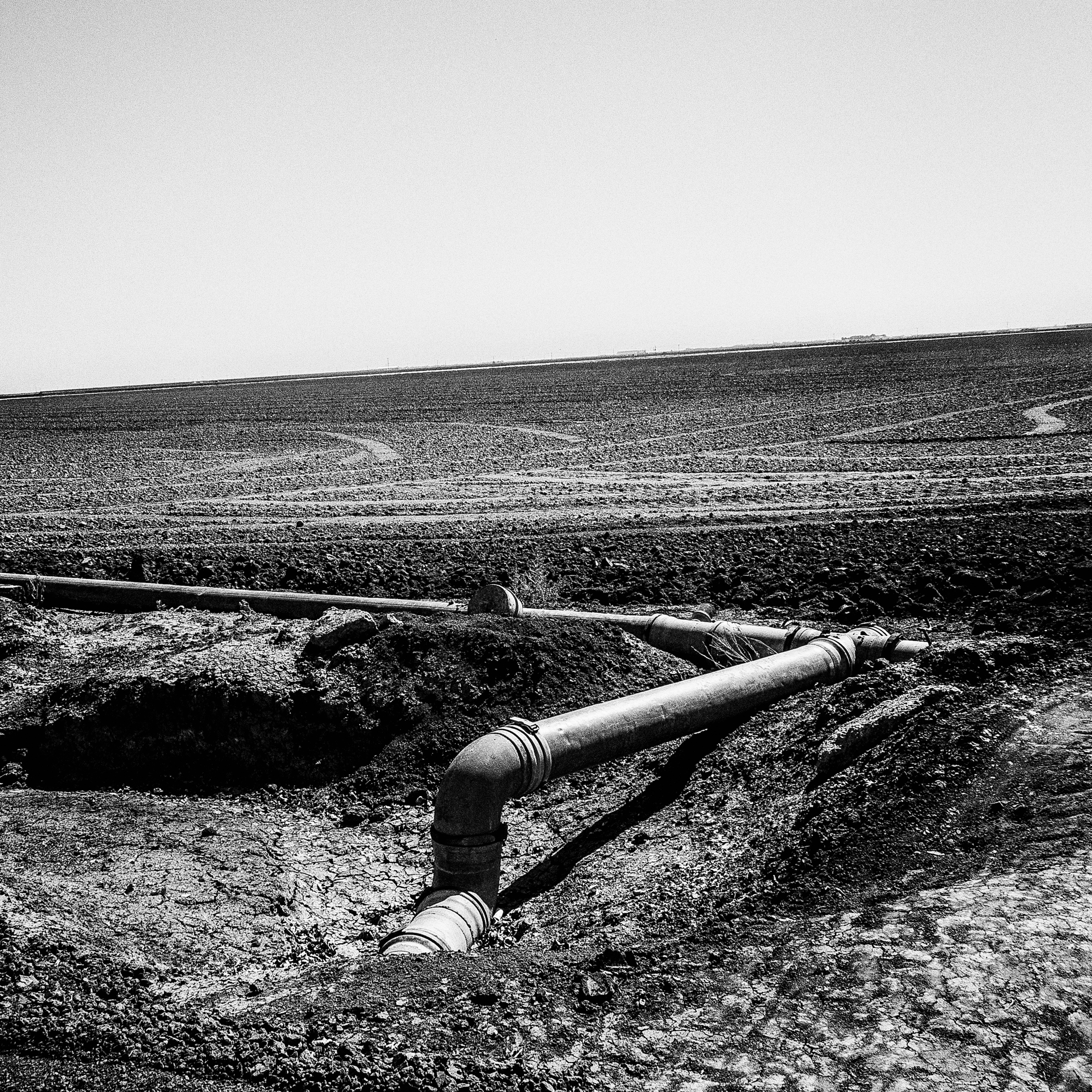 Fallowed fields.  Huron, CA.  Job losses from drought are pushing unemployment past 50% in some Central Valley towns.