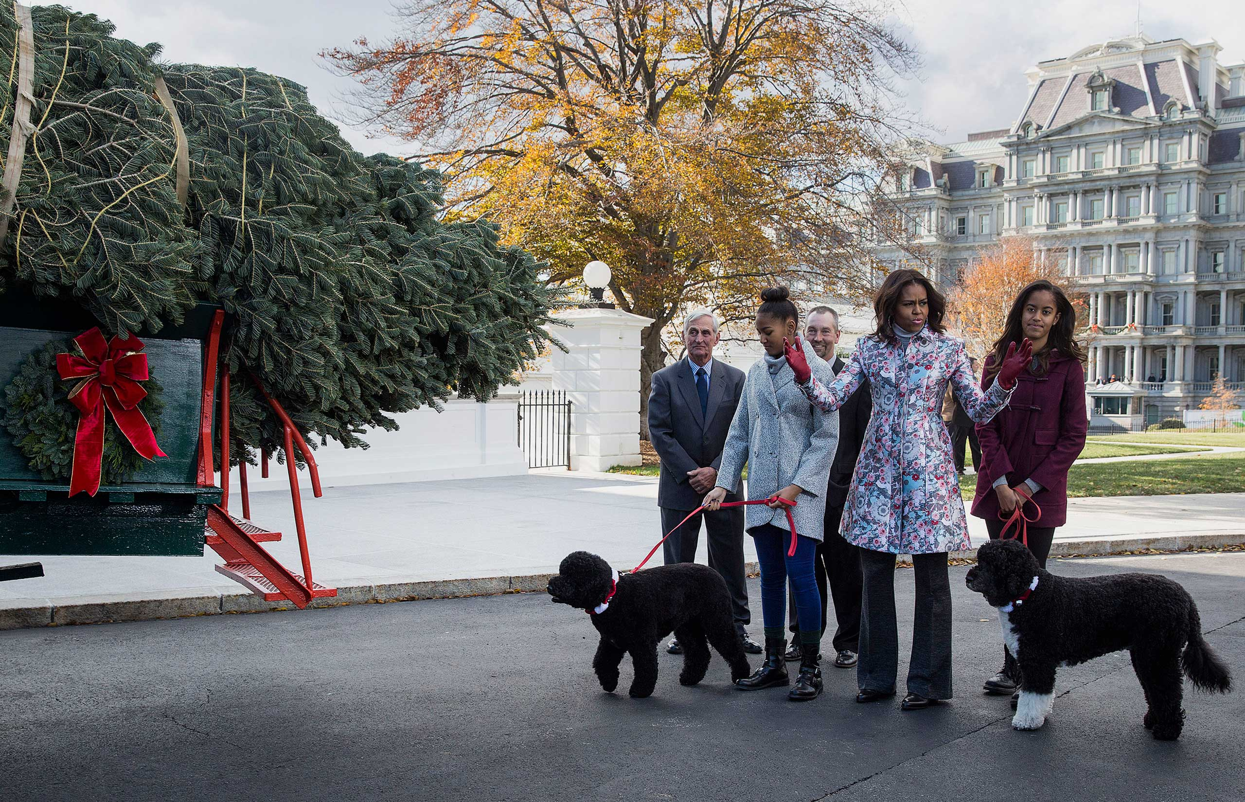 No ugly Christmas sweaters in sight as Obama, daughters Malia and Sasha and the family dogs greet the White House Christmas tree.