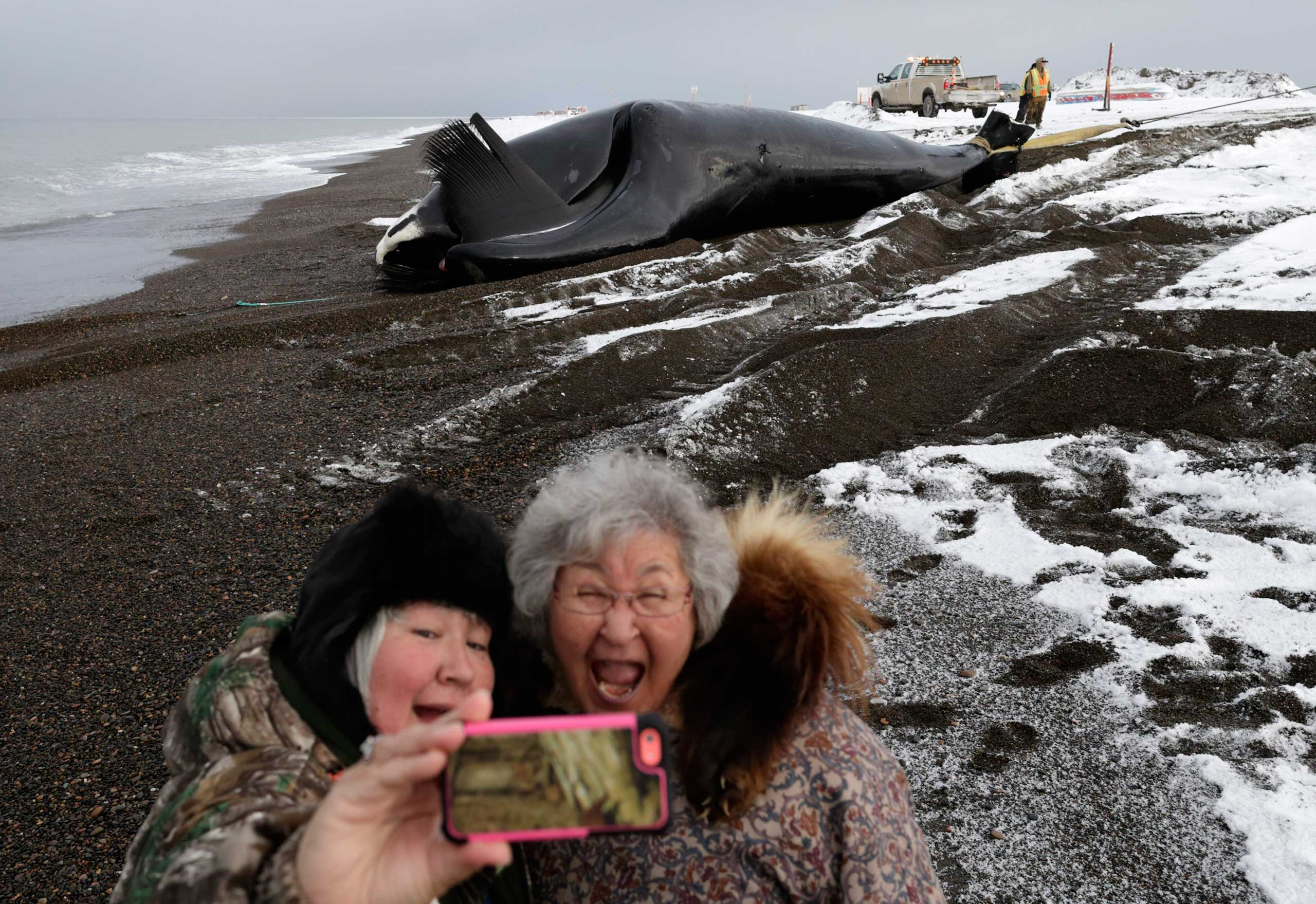Molly Pederson, right, and her daughter Laura Patkotak take a picture as a bowhead whale caught by Alaska Native subsistence hunters from their family is brought ashore in Barrow, Ala., Oct. 7, 2014.