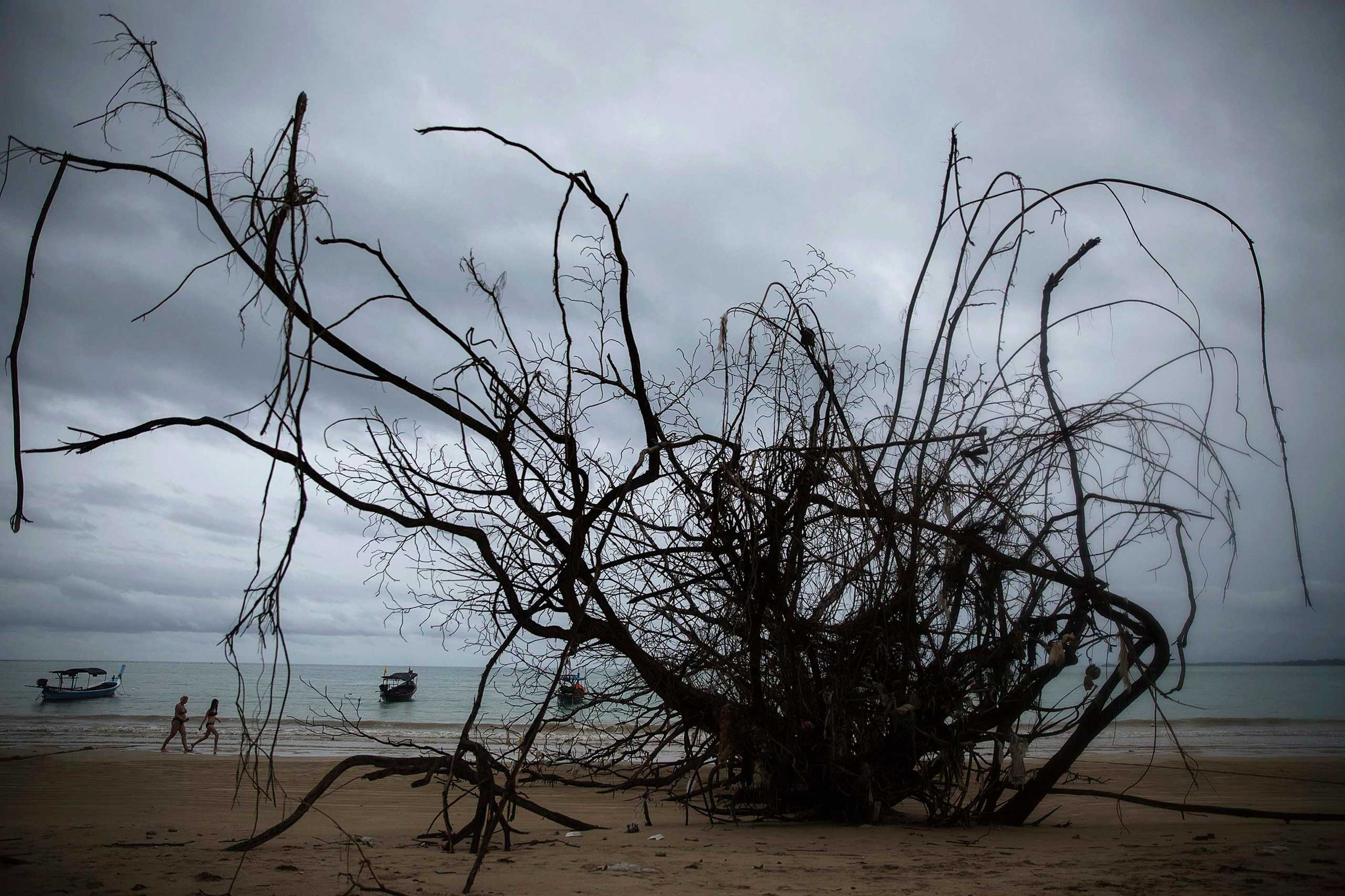 Dec. 14, 2014. Foreign tourists walk on a small beach with fallen big trees and damage still visible from the 2004 tsunami in Khao Lak, in Phang Nga province, about 110 km (68 miles) north of the resort island of Phuket. Thailand prepares to mark the tenth anniversary of the 2004 tsunami, the deadliest on the record, that killed at least 226,000 people in 13 Asian and African countries. In Thailand, over 5300 people were killed.