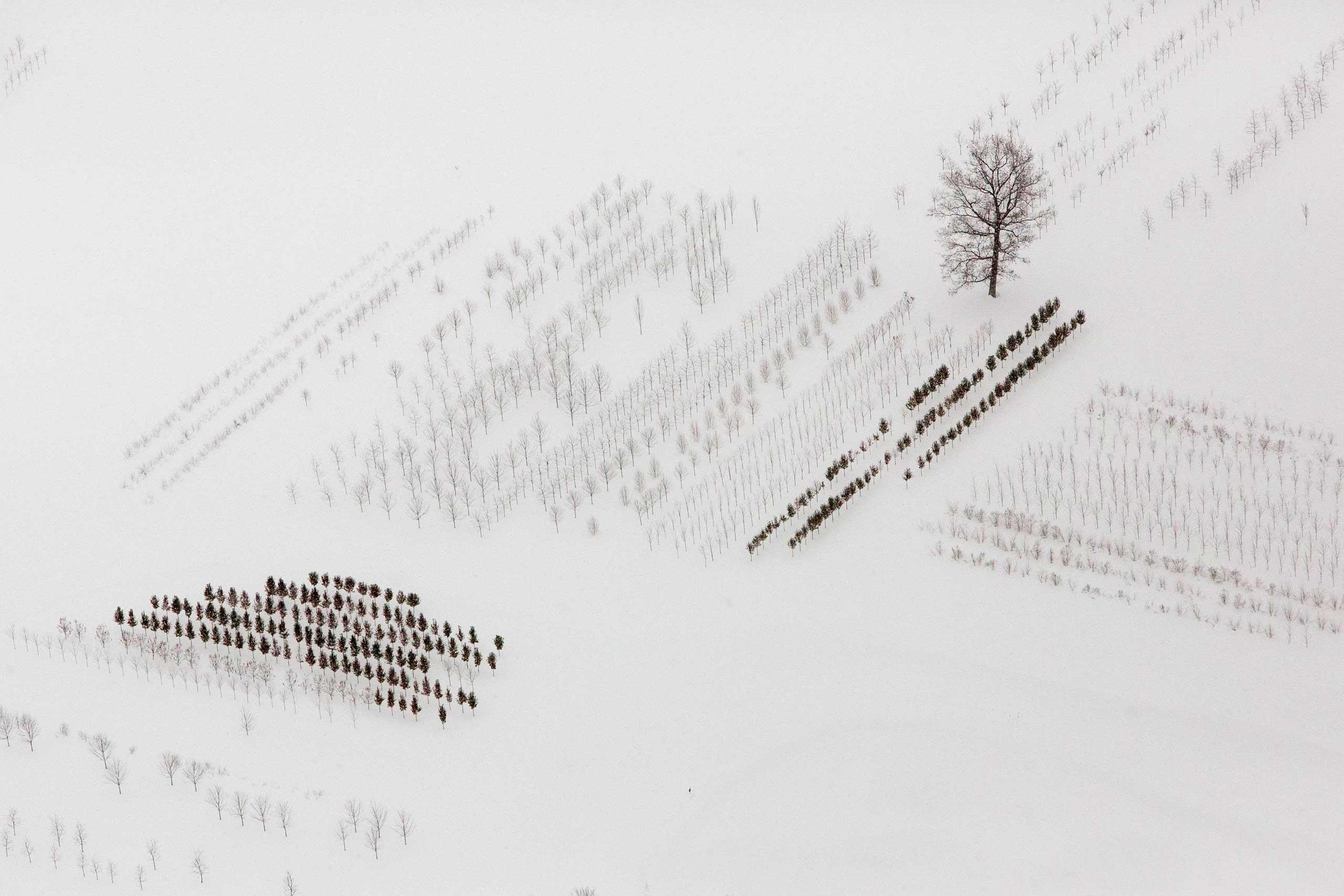 A snow-covered field is seen near Buffalo, New York, Nov. 21, 2014.