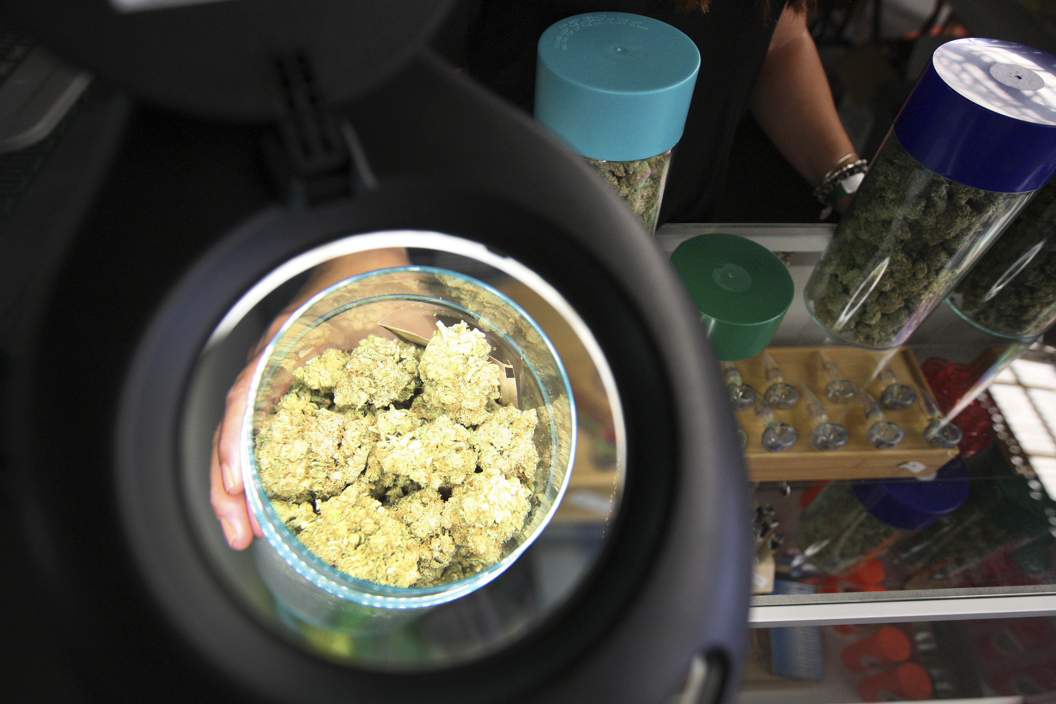 Marijuana is seen under a magnifier at the medical marijuana farmers market at the California Heritage Market in Los Angeles, California July 11, 2014