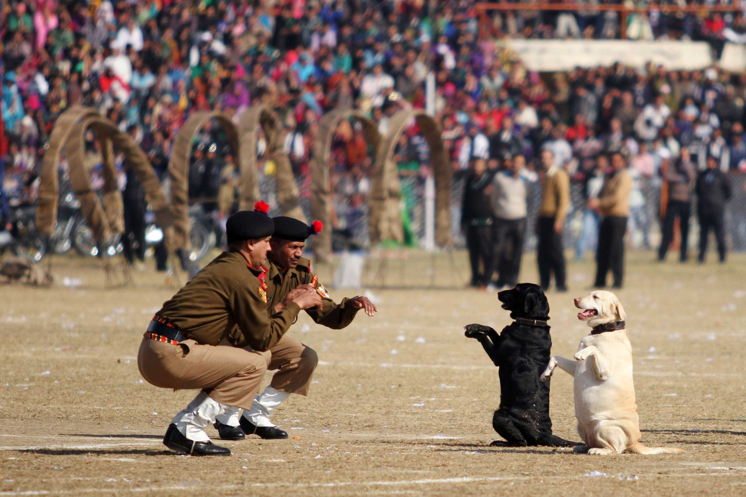 Indian Border Security Force Dog Squad personnel take part in a march during Republic Day celebrations in Jammu. India, Jan. 26, 2014.