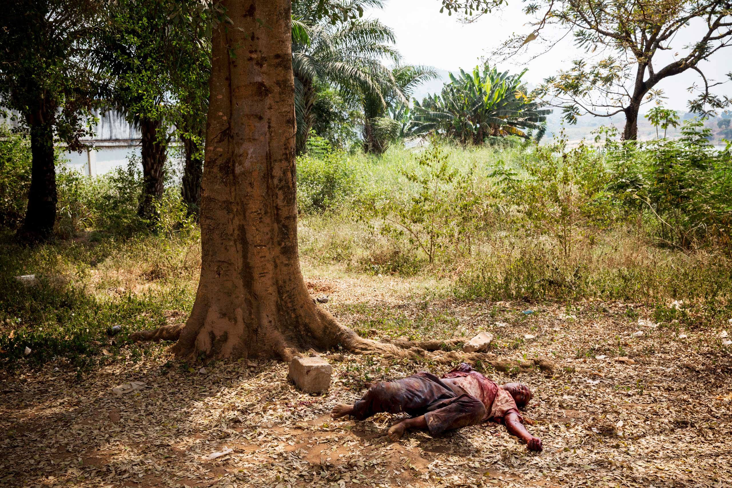 A wounded Muslim man lies on the ground after being attacked by dozen of angry Christians, who claimed he was a member of Séléka. He is protected by African and French soldiers but will later die from his wounds before a medic arrives. Bangui, Central African Republic. Jan. 22, 2014.