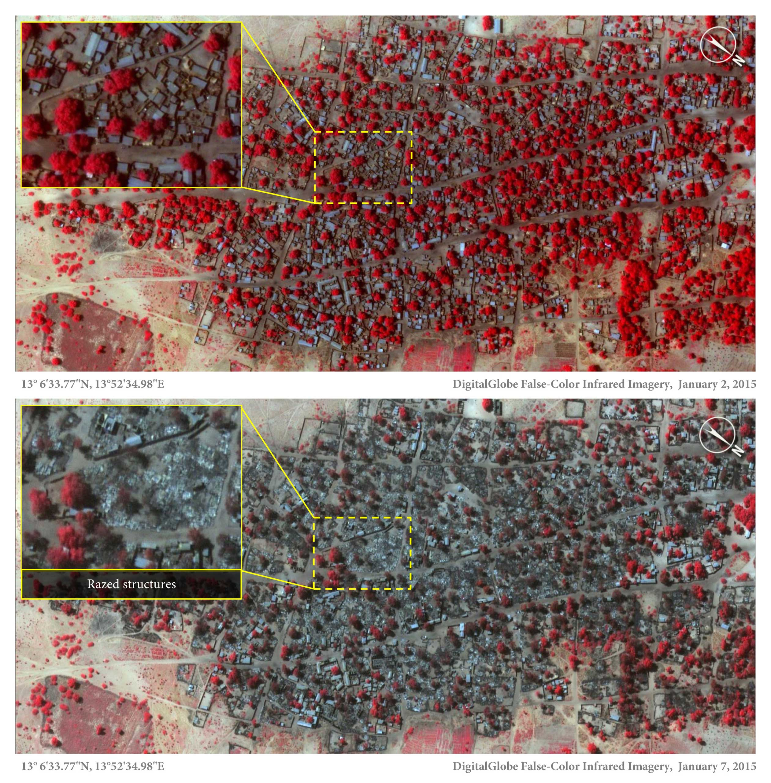 Above is a satellite image that shows densely packed structures and tree cover in Doro Baga, northeastern Nigeria, on Jan. 2, 2015. Below, in an image on Jan. 7, shows almost all of the structures razed. (Red areas indicate healthy vegetation.)