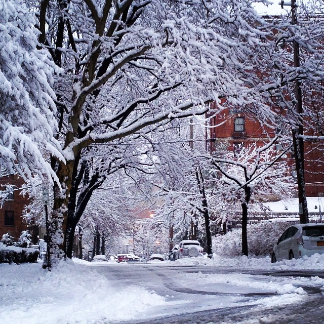 """Instagram user @78ish posted this image of White Plains, NY saying """"#wokeuptothis #Snow #white #beutiful #to #look #at #hate #to #clean #it #girlswillhavefun #NYC #WINTERWONDERLAND #WEneedsummer #cold"""""""