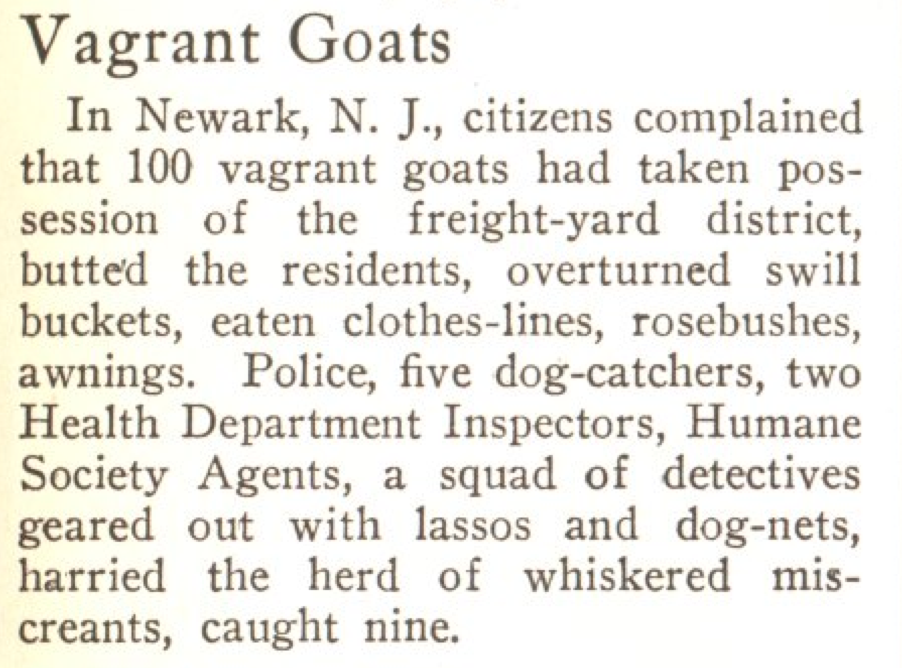 From the Aug. 4, 1924, issue of TIME. More like sowing your wild goats, am I right?