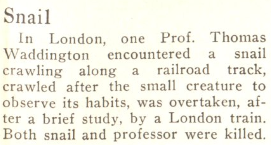 From the May 25, 1925, issue of TIME