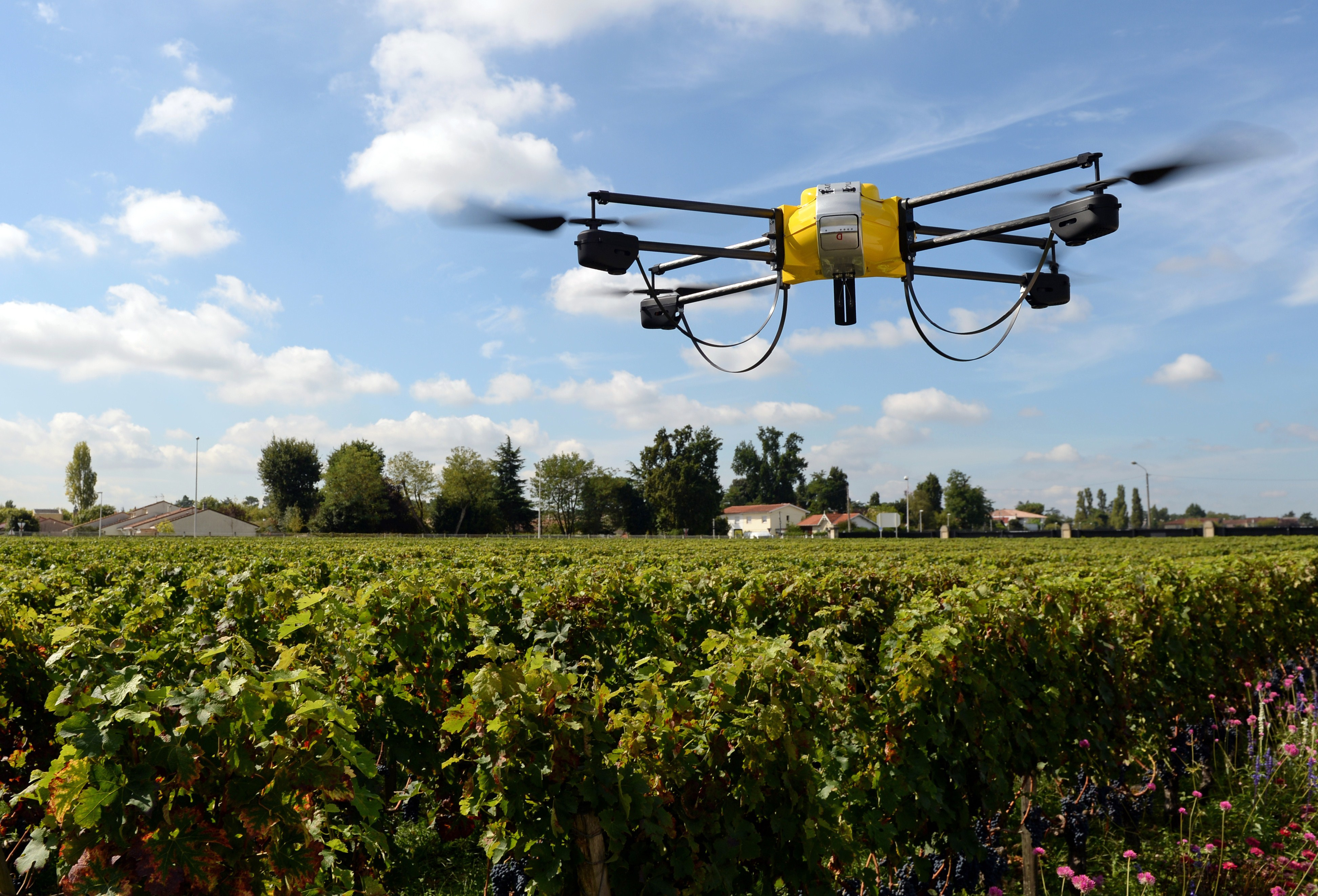 A photo taken on September 9, 2014 shows a drone flying over vineyards of the Pape Clement castle in the soutwestern French town of Pessac.