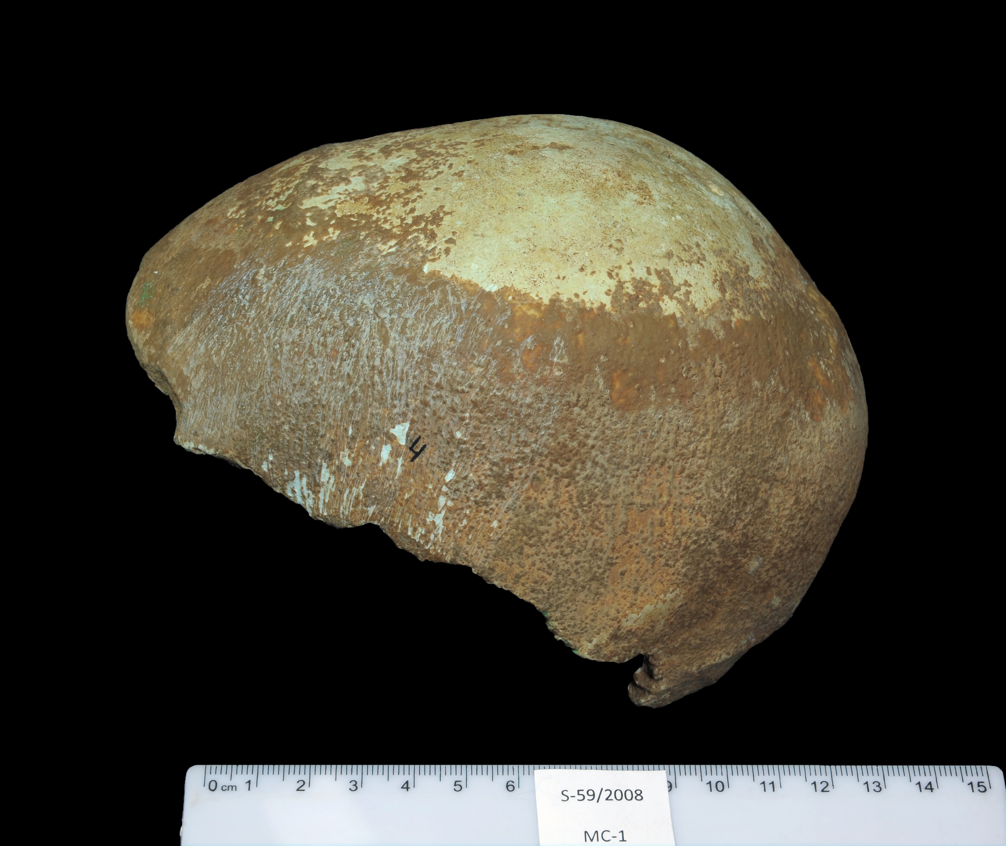 This undated photo provided by the Israel Antiquities Authority on Jan. 27, 2015, shows a partial human skull excavated from a cave in Israel's western Galilee region
