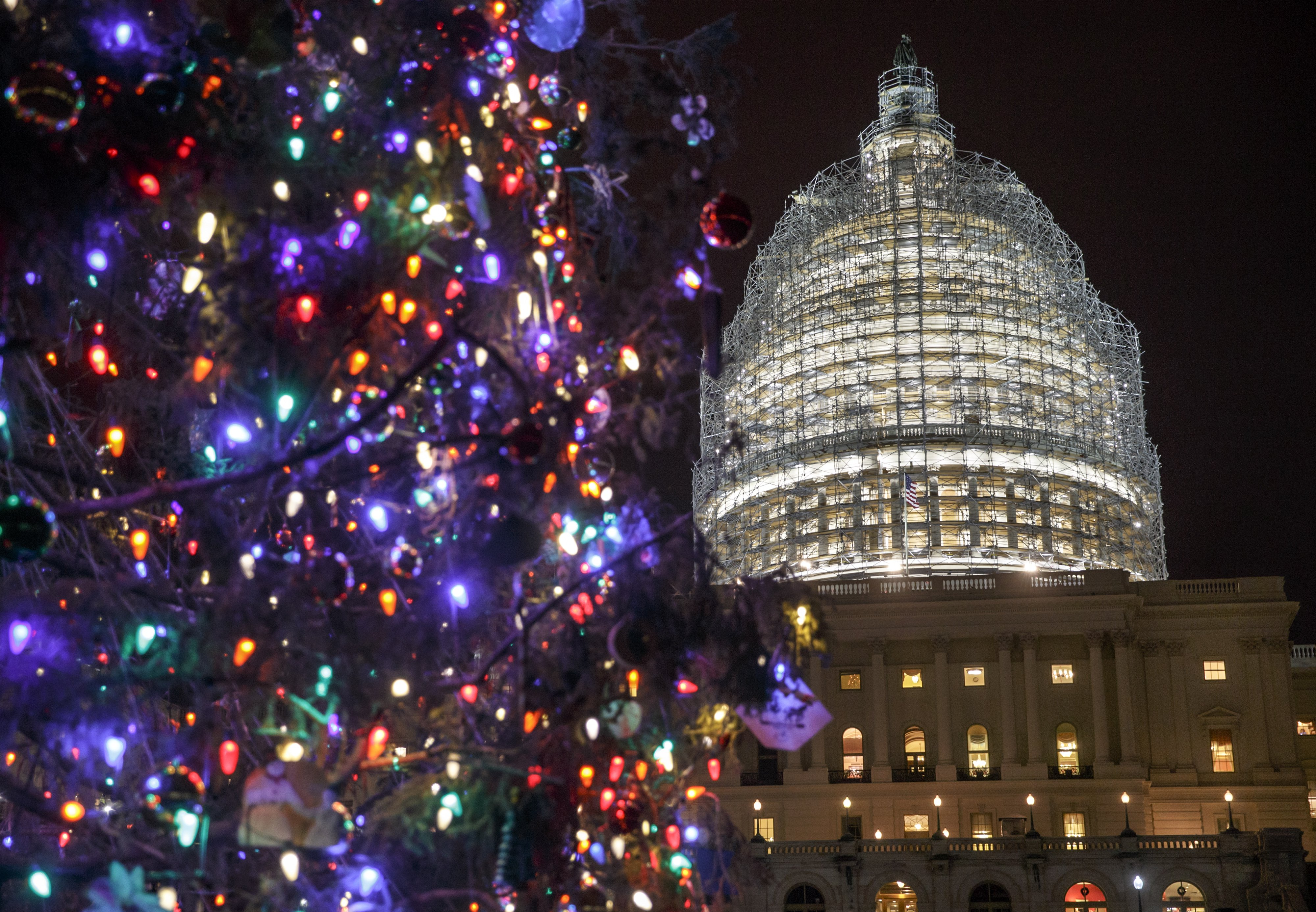The Capitol Dome and the Capitol Christmas Tree are illuminated in Washington D.C. on Dec. 11, 2014.
