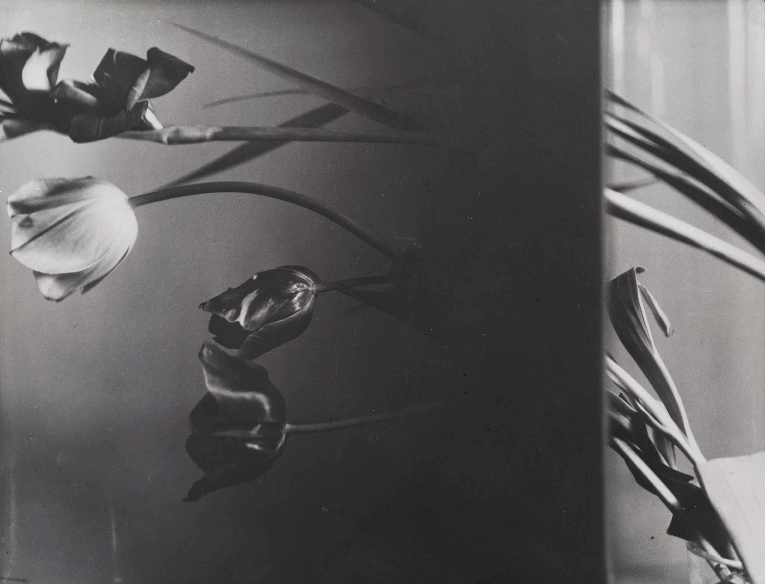 Composition with still life, 1931