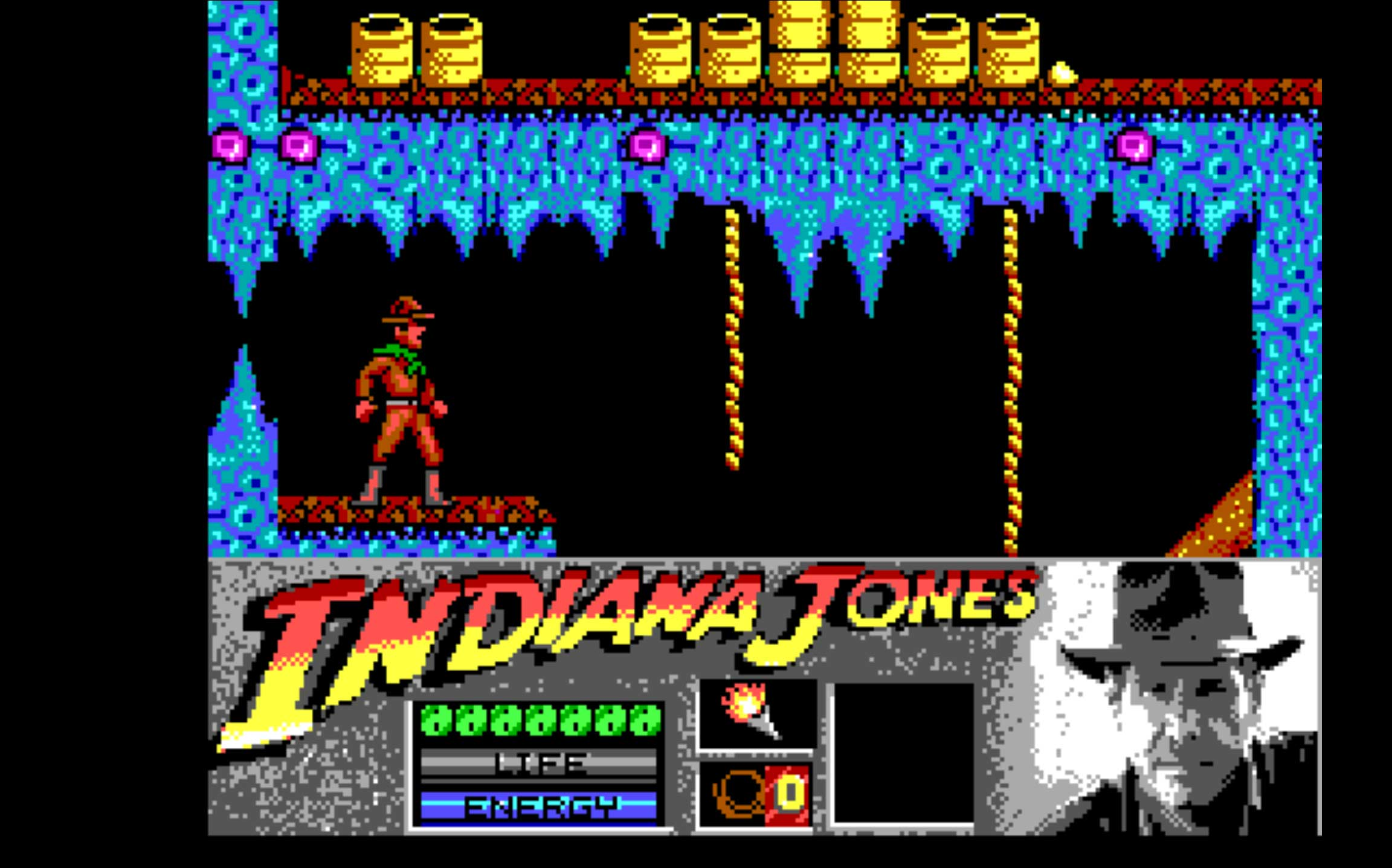 Indiana Jones and the Last Crusade - The Action Game (1989)                                                              This 1989 title was a Holy Grail for gamers, because it gave them control of Indiana Jones, one of the 80's coolest characters.
