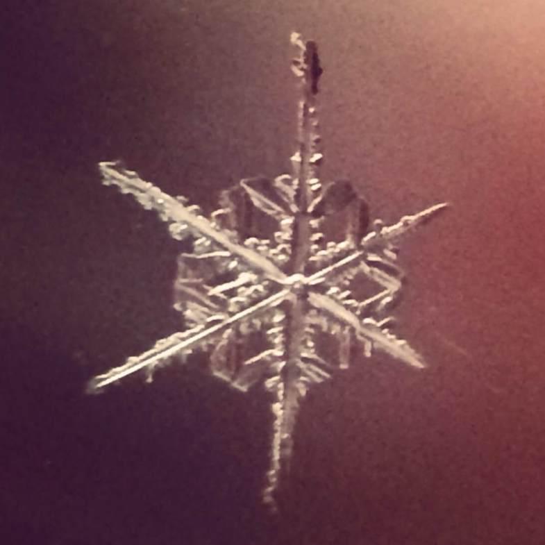 Snowflake IV