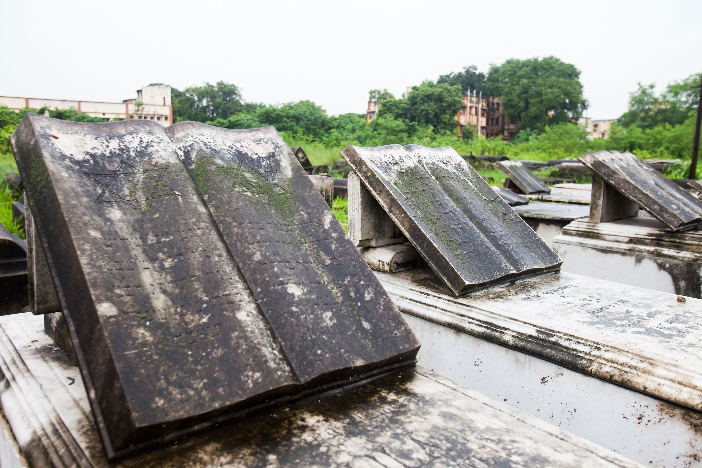 The Jewish cemetery in Calcutta in August 2014. The cemetery is over 150 years old and consists of about 2,000 Jewish tombs along with those of Russians and Polish Jews.  Usually the more elaborate and rectangular graves are those of Ashkenazy Jews. Bagdadi graves are rounded and have no decorative features.