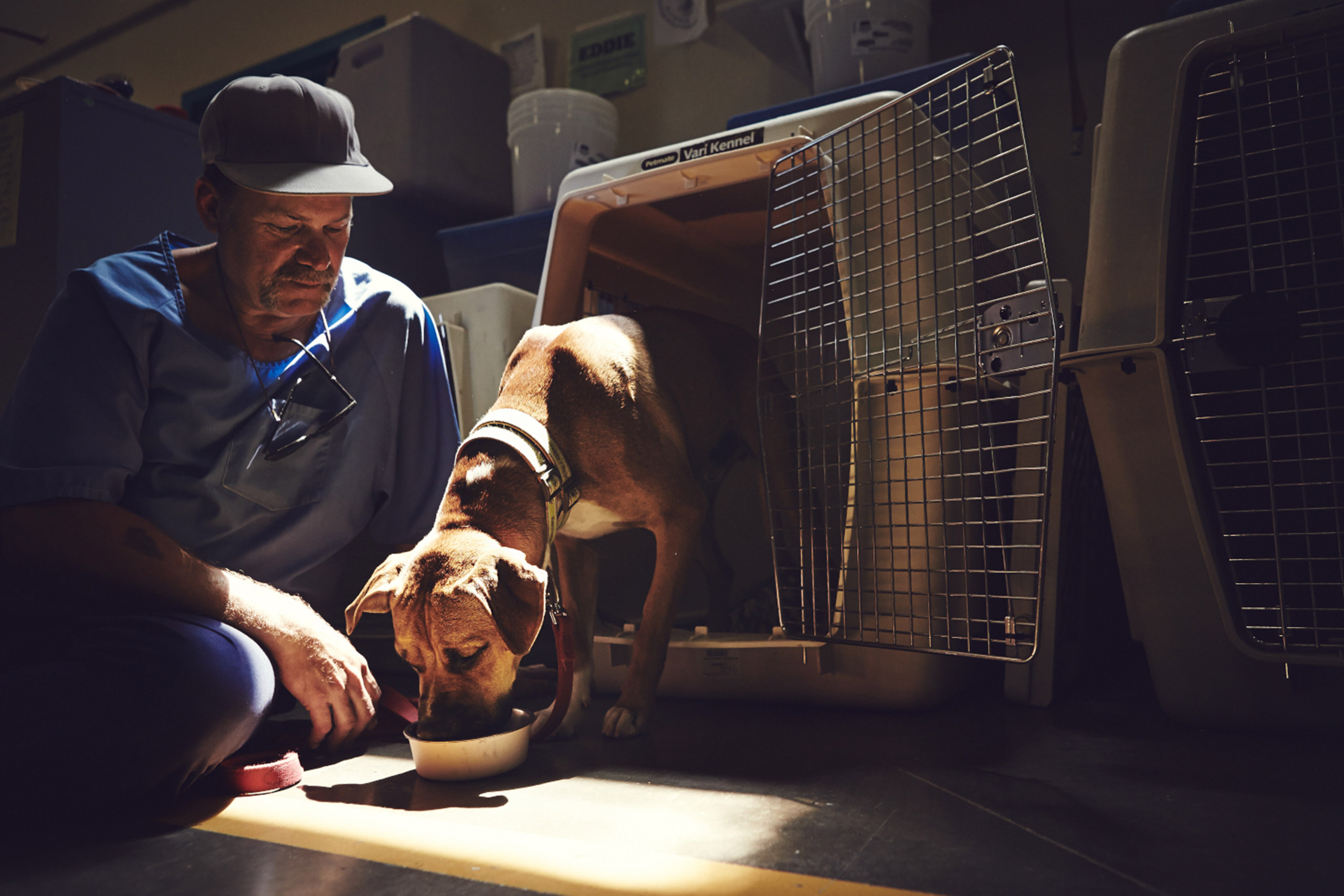 Inmate John feeding a dog named Rendell in his crate in the morning.