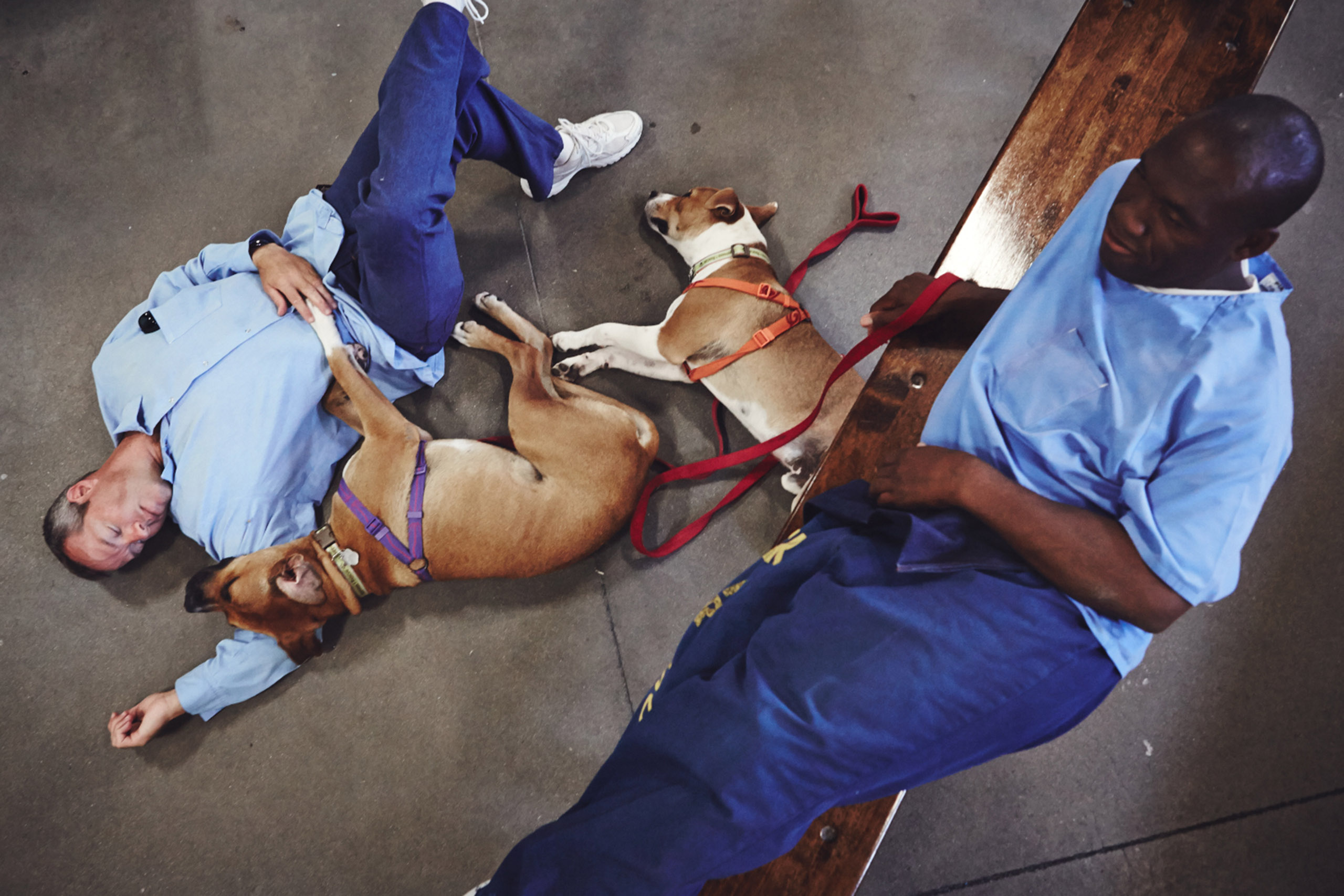 Inmates Jack and Marcus relaxing with dogs in the late afternoon inside cell block A5.